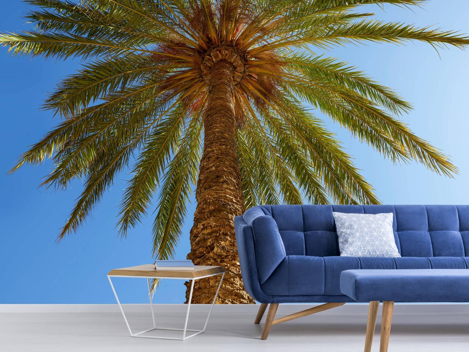 Palmbomen - Gedetailleerde Palmboom - Slaapkamer 6