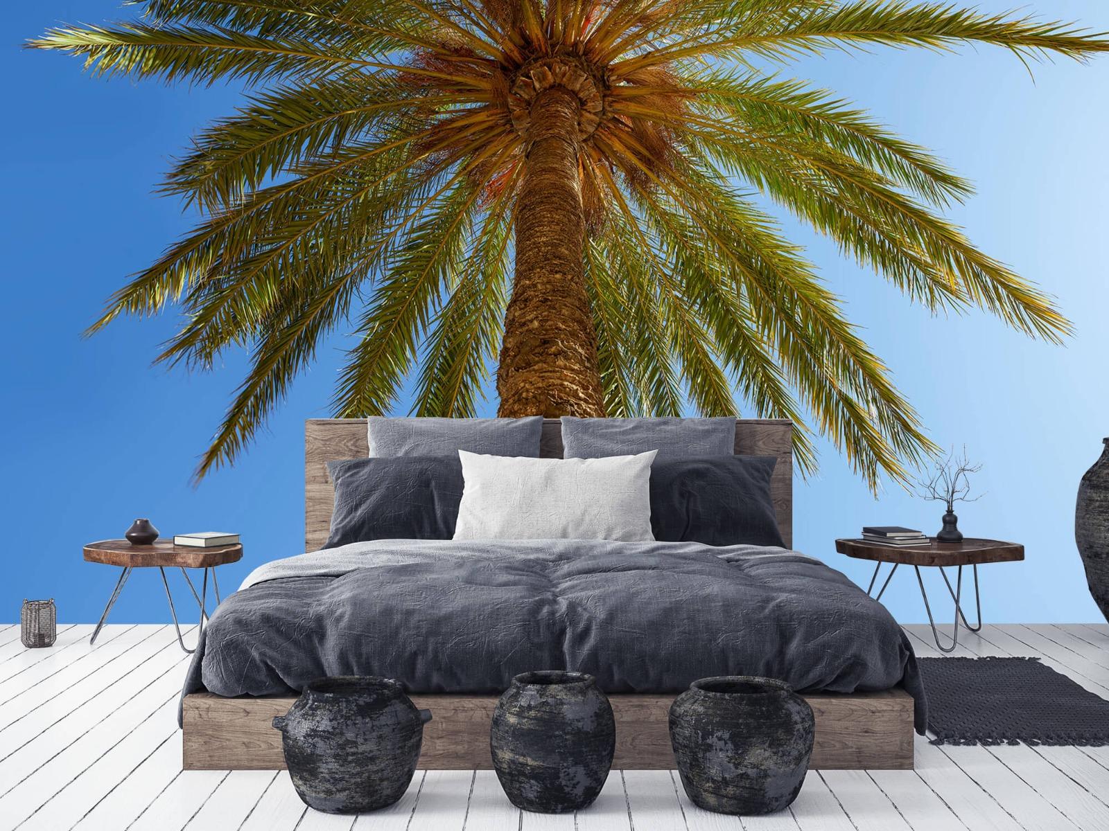 Palmbomen - Gedetailleerde Palmboom - Slaapkamer 7