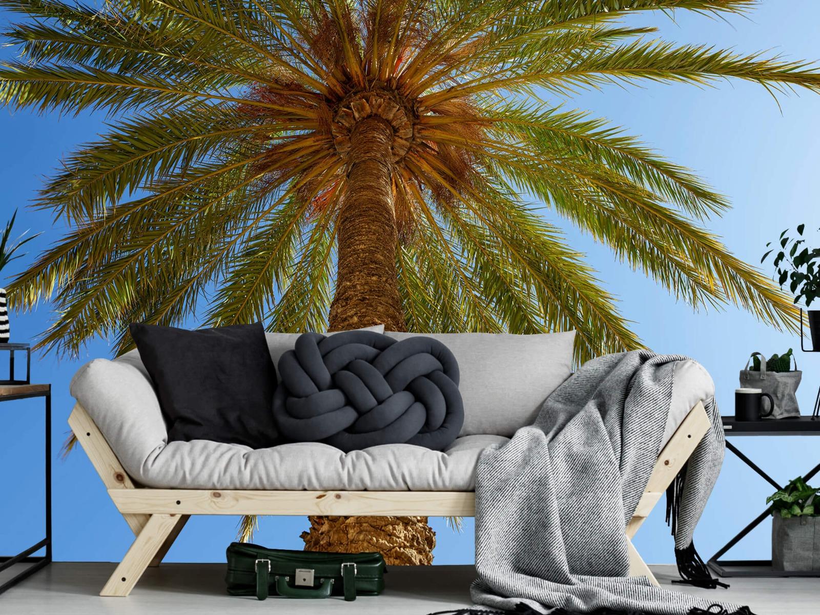 Palmbomen - Gedetailleerde Palmboom - Slaapkamer 8