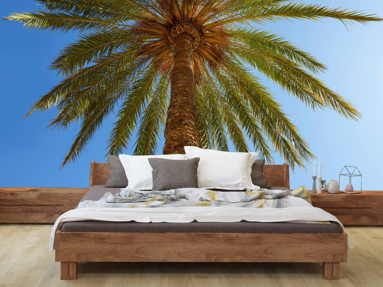 Palmbomen - Gedetailleerde Palmboom - Slaapkamer 9