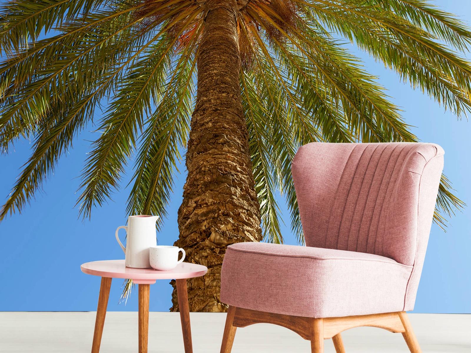 Palmbomen - Gedetailleerde Palmboom - Slaapkamer 10