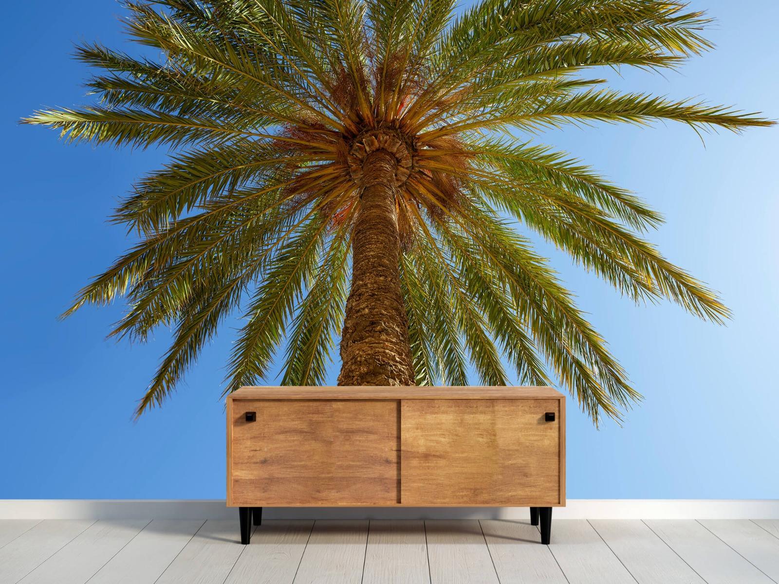 Palmbomen - Gedetailleerde Palmboom - Slaapkamer 11