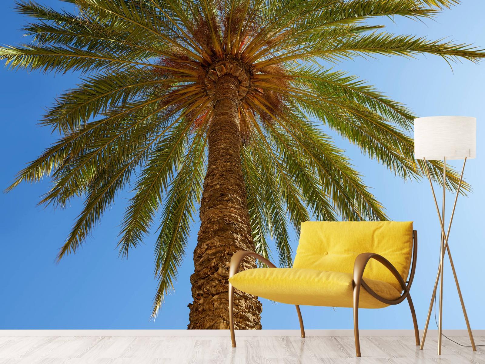 Palmbomen - Gedetailleerde Palmboom - Slaapkamer 3