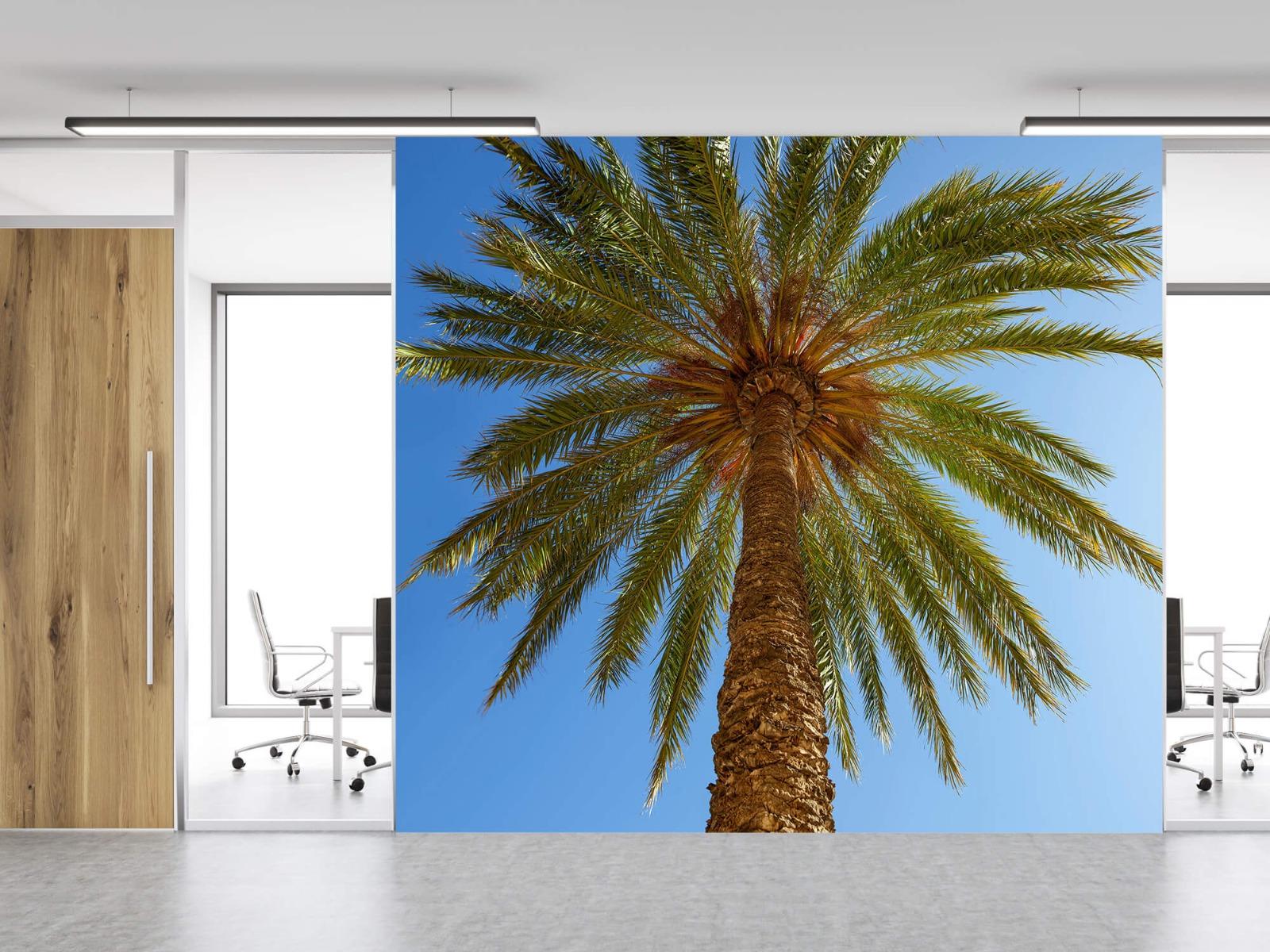 Palmbomen - Gedetailleerde Palmboom - Slaapkamer 12
