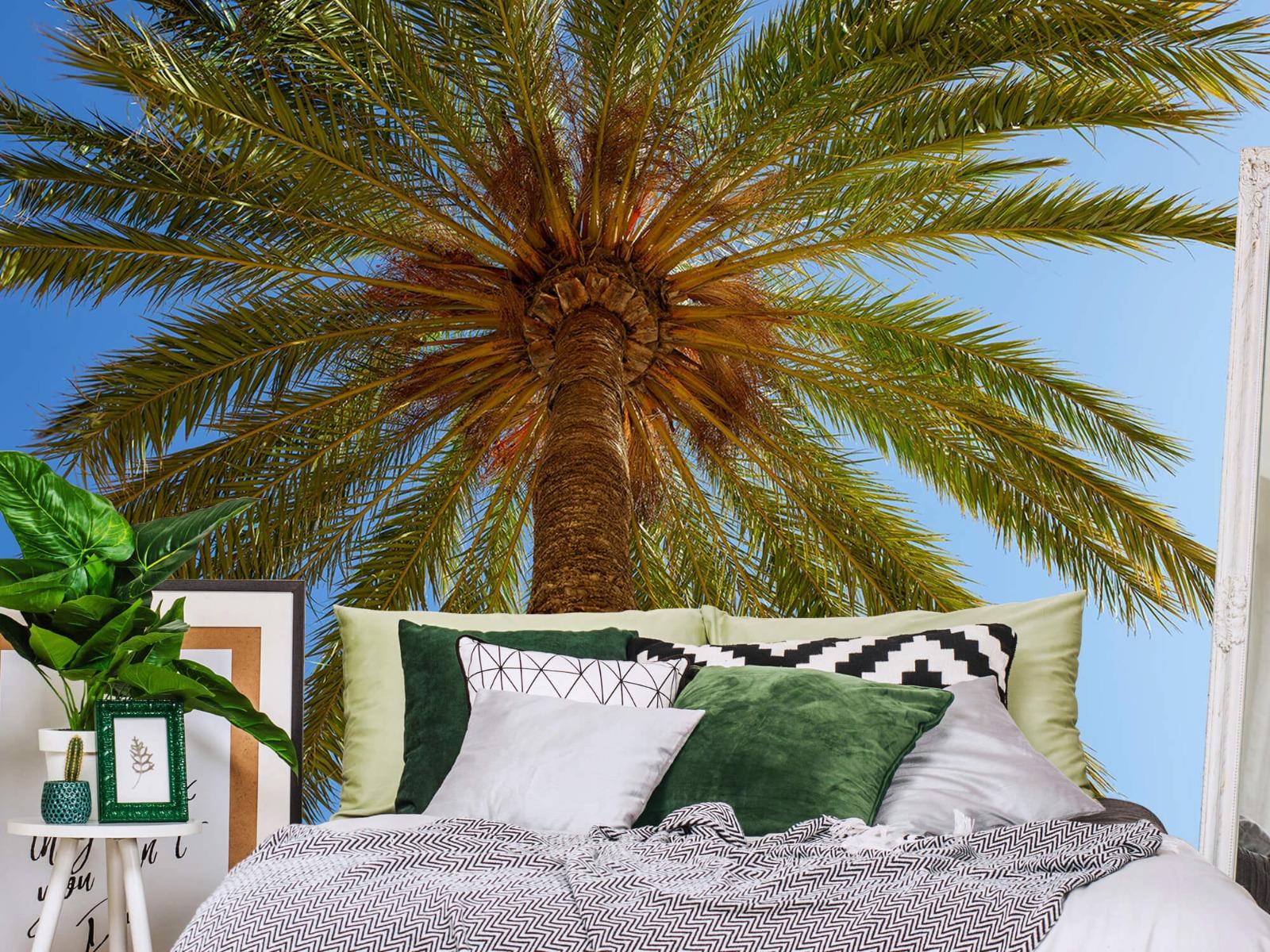 Palmbomen - Gedetailleerde Palmboom - Slaapkamer 13