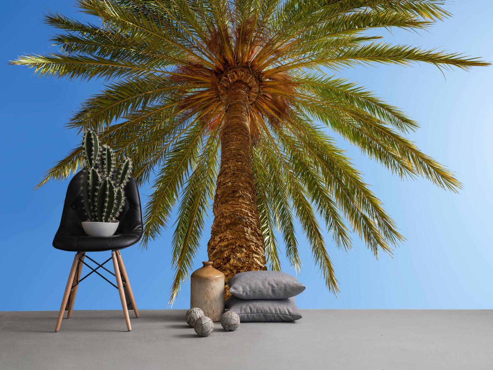 Palmbomen - Gedetailleerde Palmboom - Slaapkamer 2