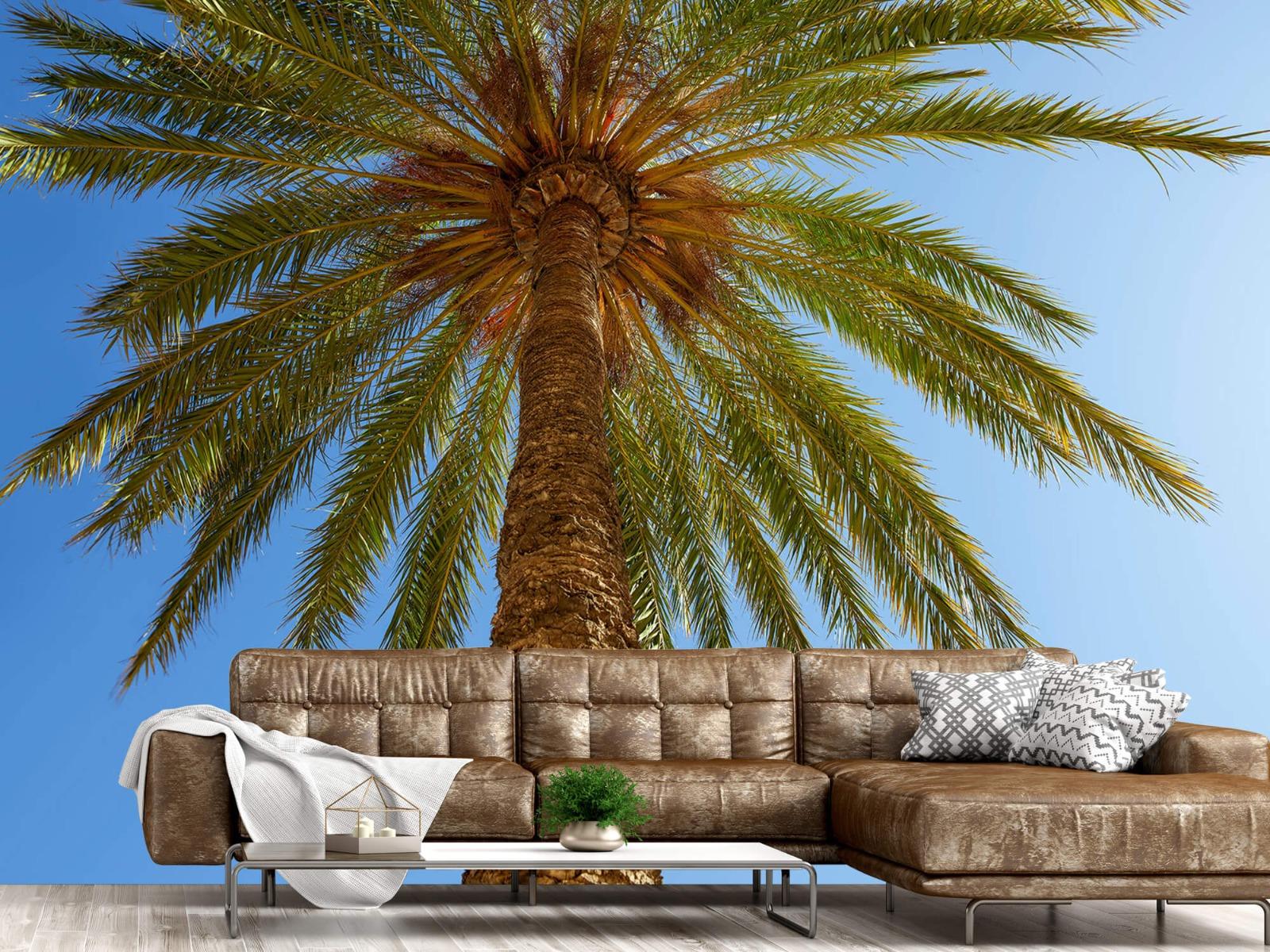 Palmbomen - Gedetailleerde Palmboom - Slaapkamer 14
