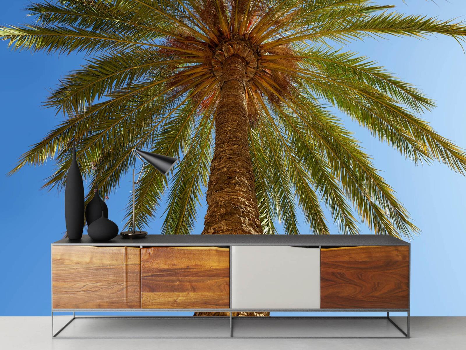 Palmbomen - Gedetailleerde Palmboom - Slaapkamer 16