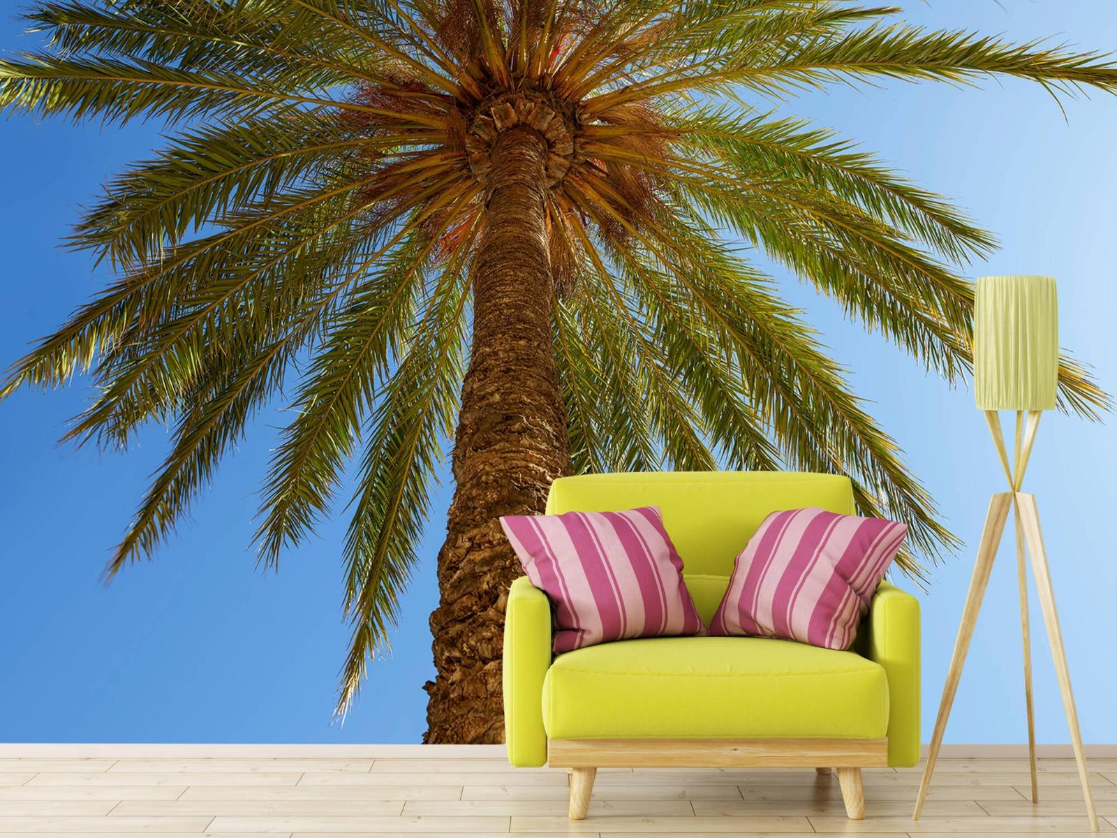 Palmbomen - Gedetailleerde Palmboom - Slaapkamer 17