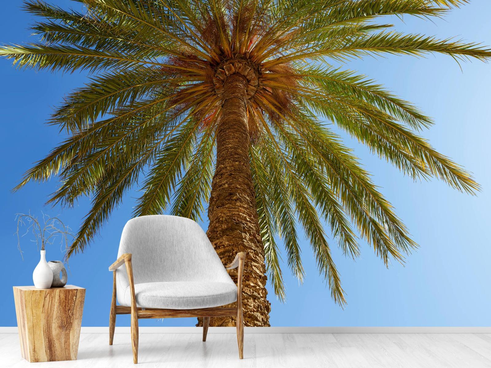 Palmbomen - Gedetailleerde Palmboom - Slaapkamer 18