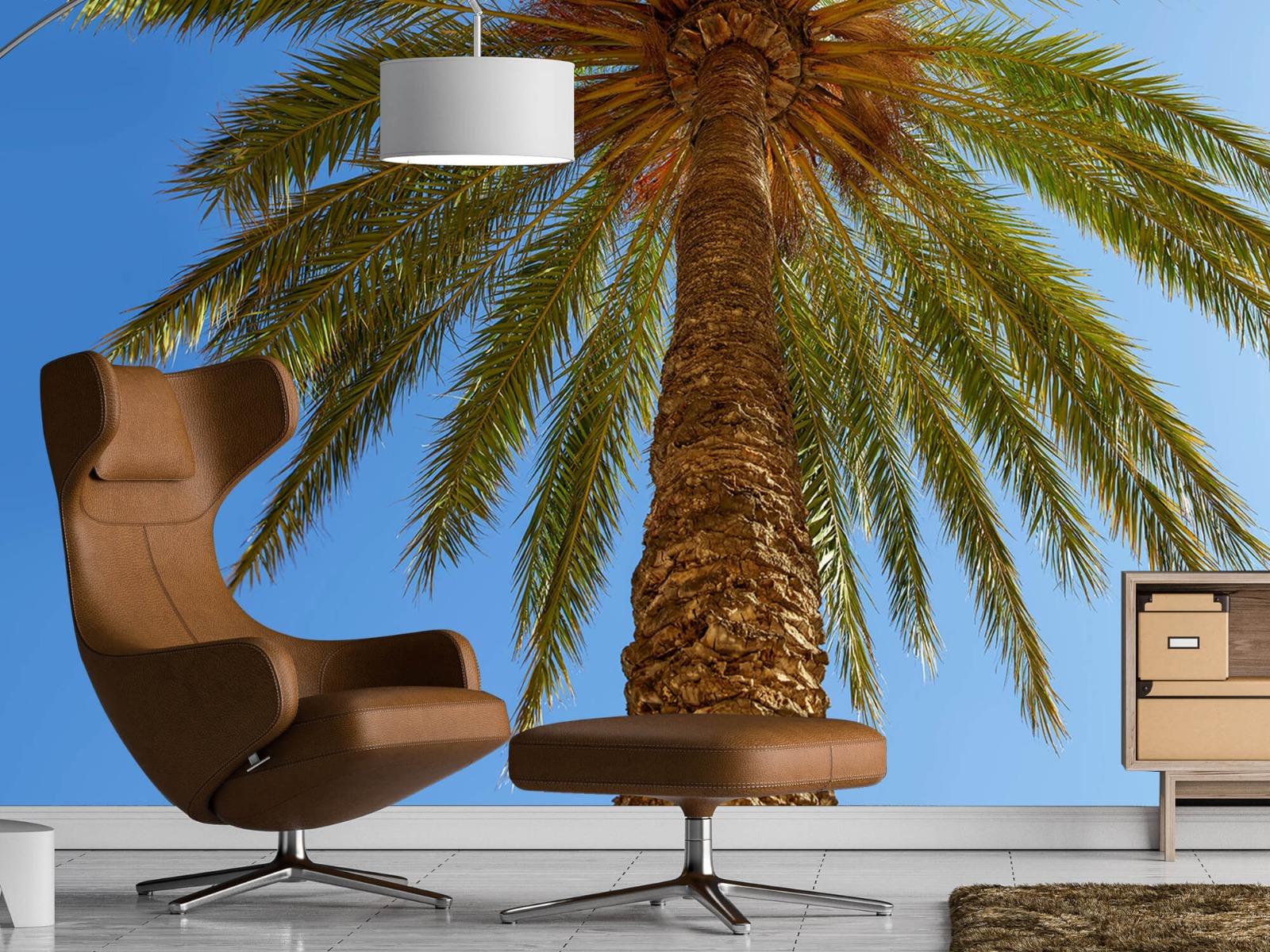 Palmbomen - Gedetailleerde Palmboom - Slaapkamer 19
