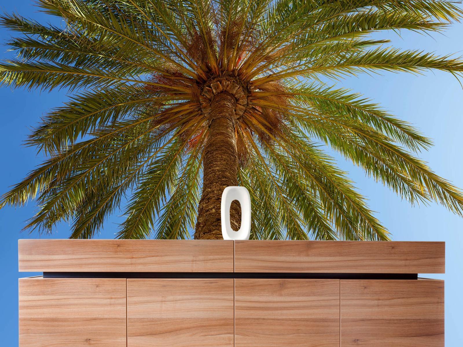 Palmbomen - Gedetailleerde Palmboom - Slaapkamer 20