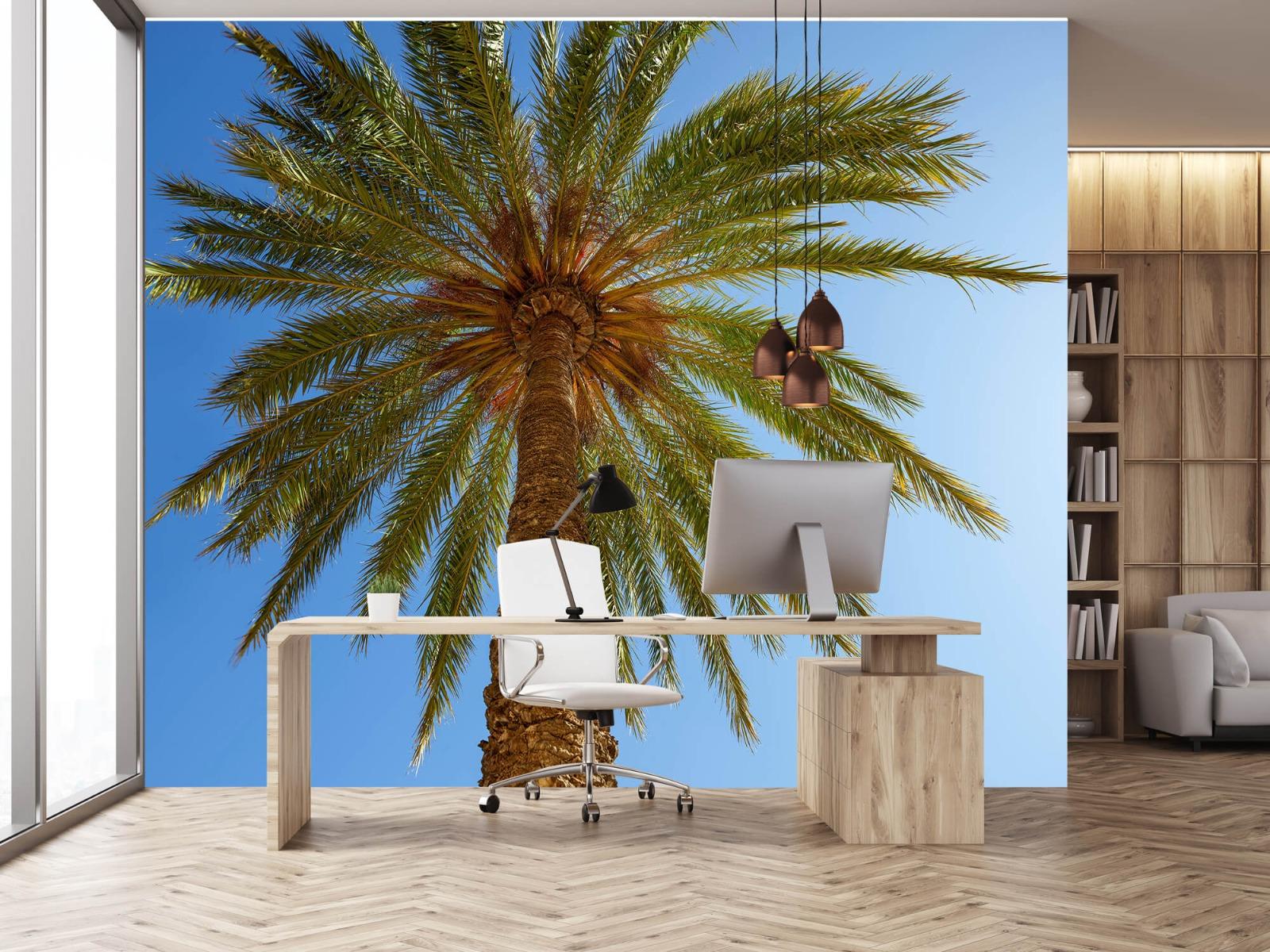 Palmbomen - Gedetailleerde Palmboom - Slaapkamer 24