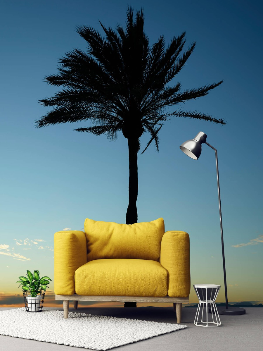 Palmbomen - Palmboom bij zonsondergang - Woonkamer 2