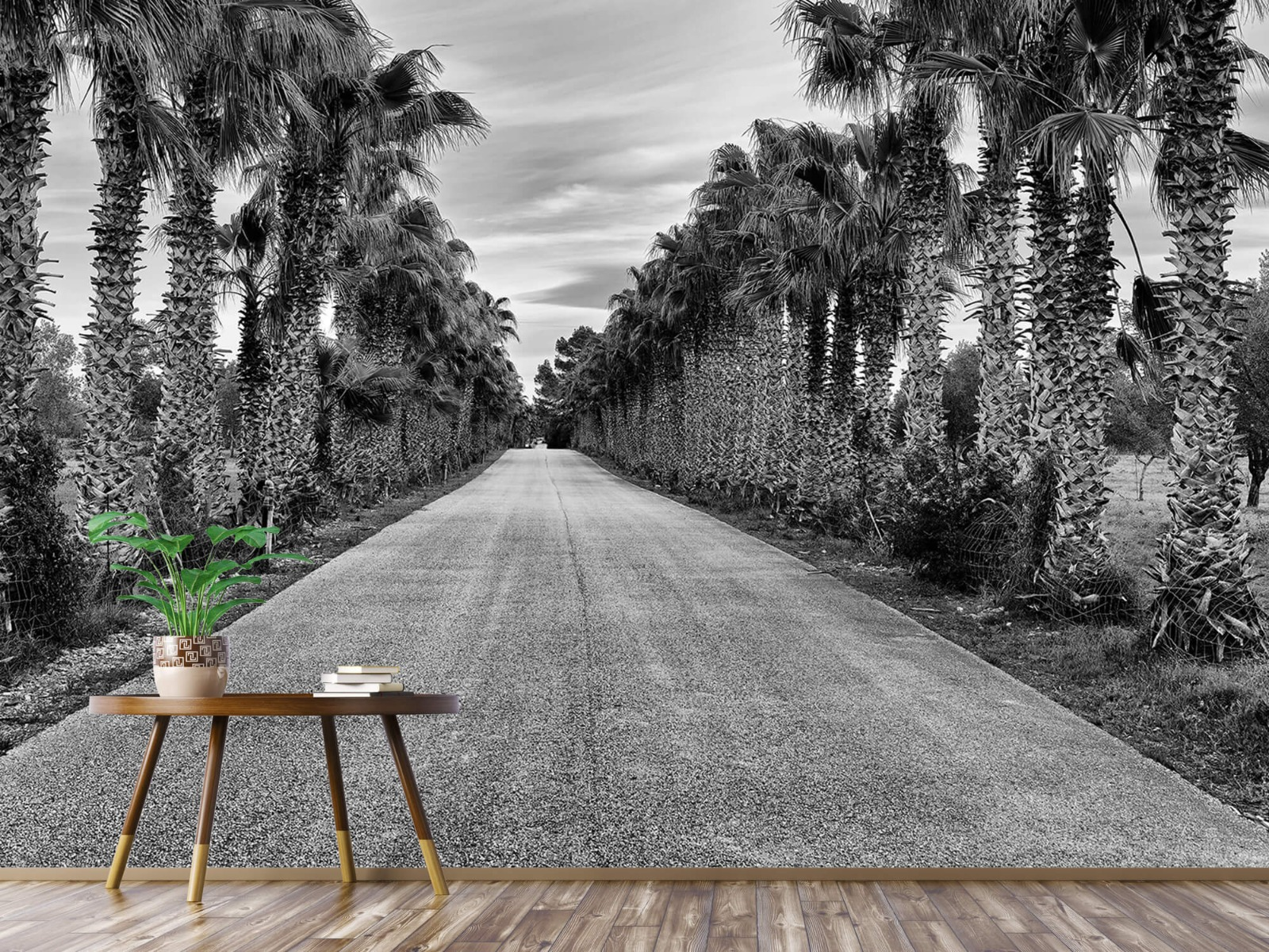 Palmbomen - Straat met palmbomen - Woonkamer 4