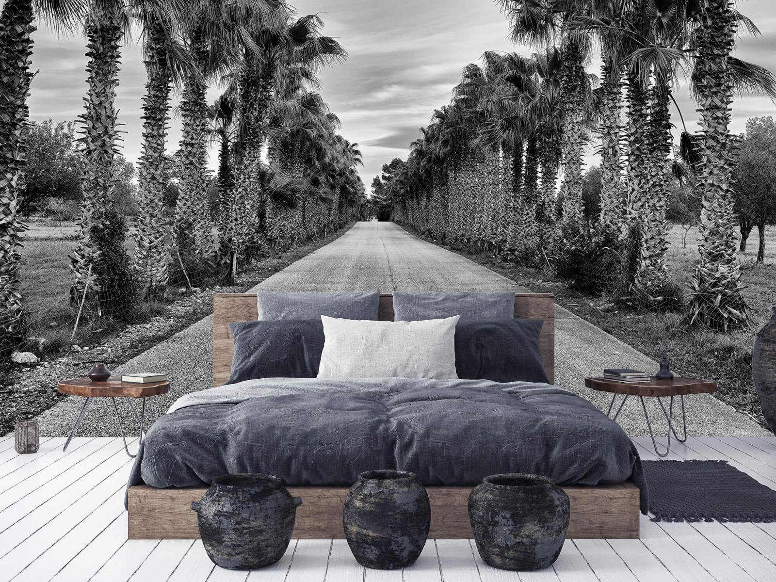 Palmbomen - Straat met palmbomen - Woonkamer 5