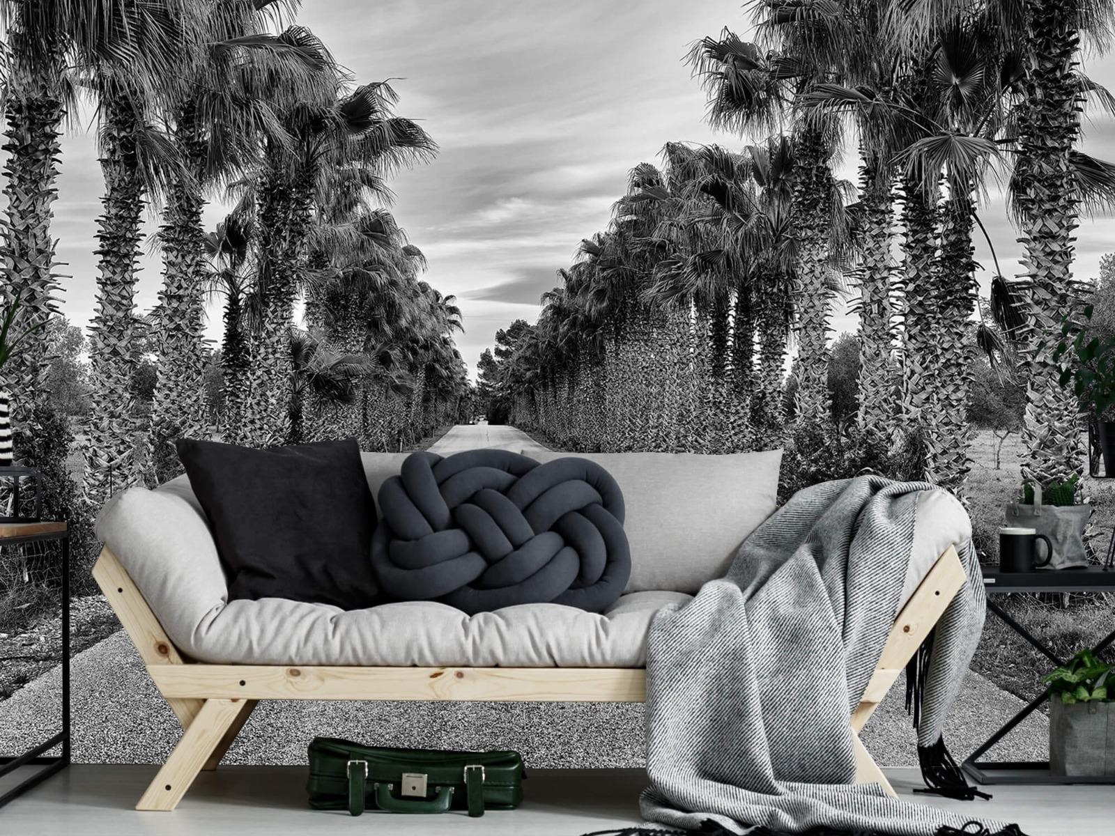 Palmbomen - Straat met palmbomen - Woonkamer 6
