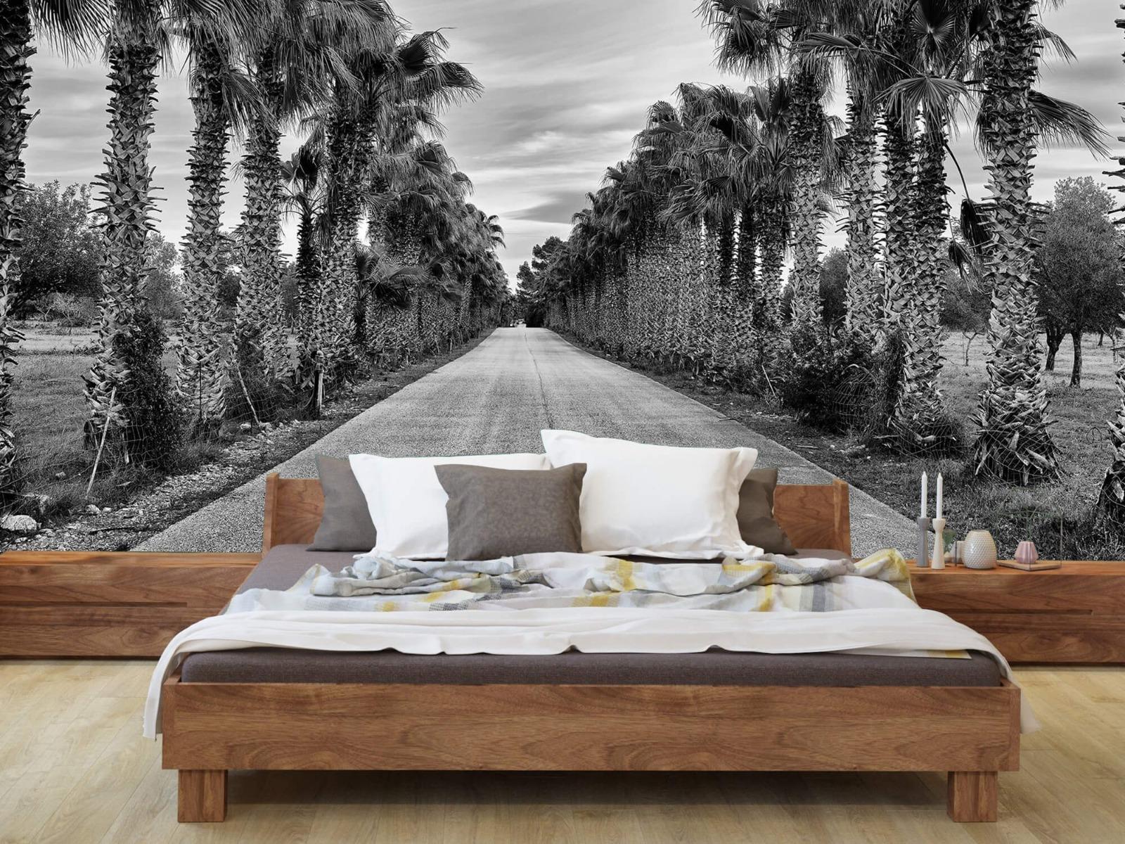 Palmbomen - Straat met palmbomen - Woonkamer 7