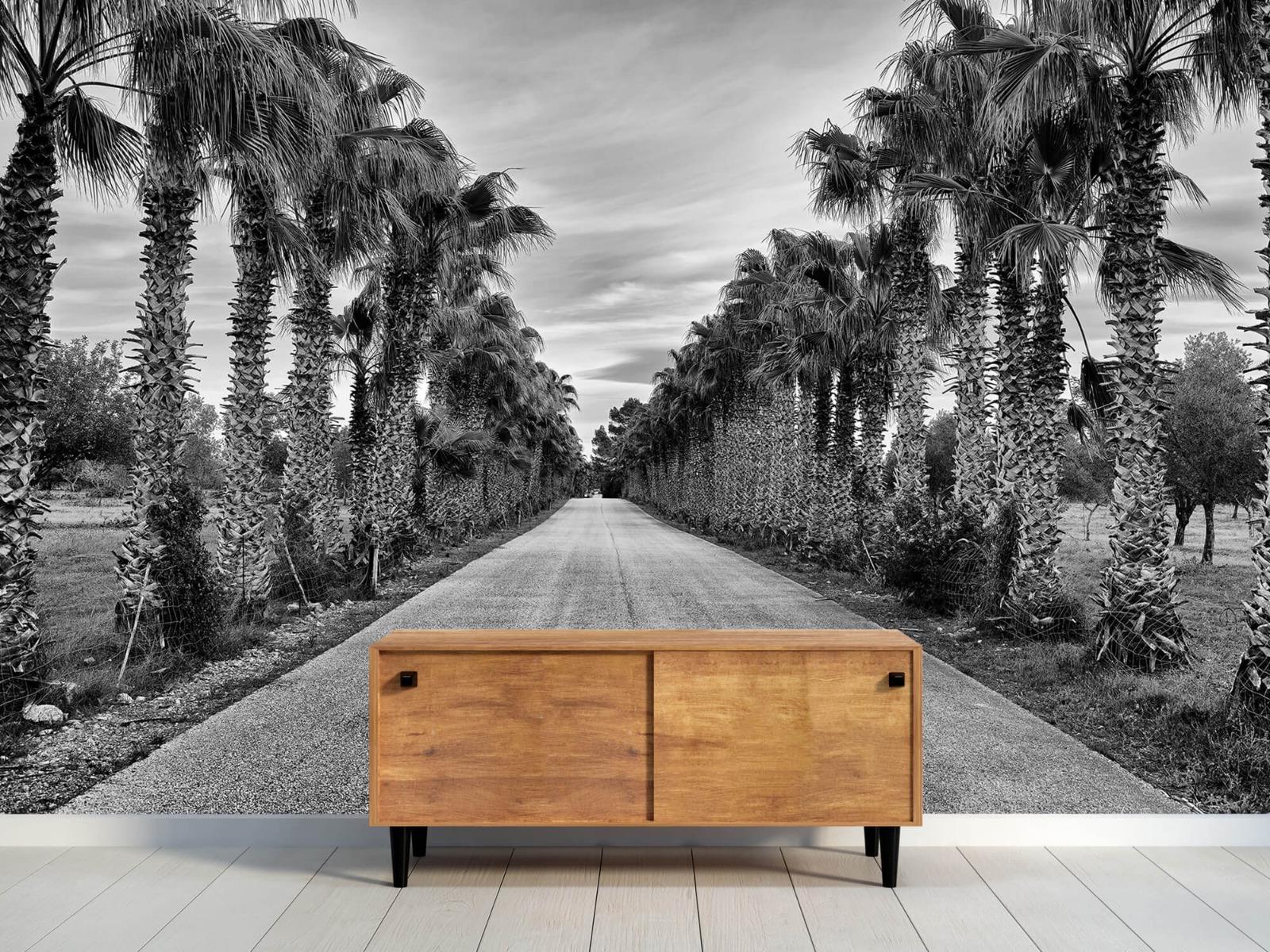 Palmbomen - Straat met palmbomen - Woonkamer 9