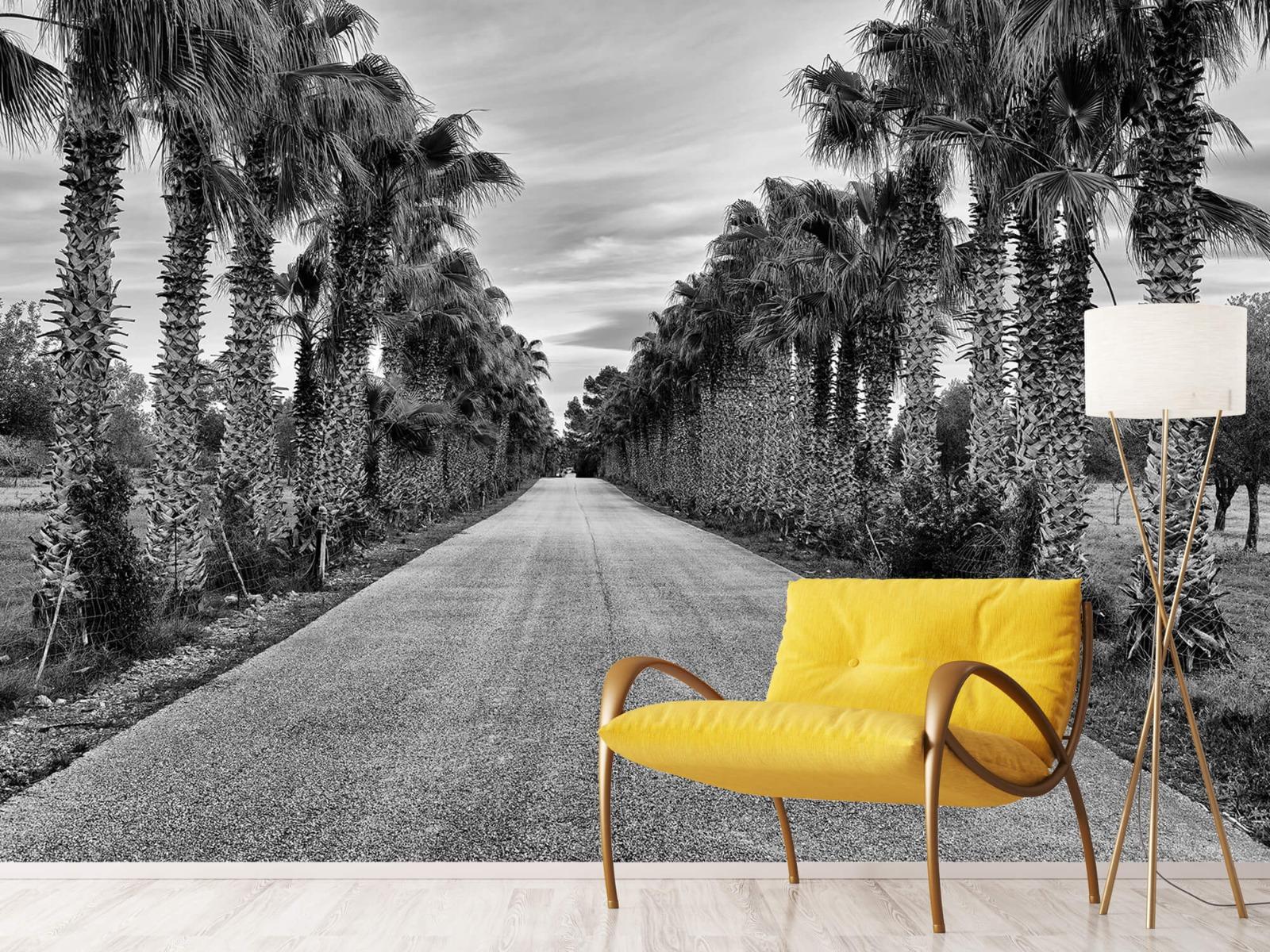 Palmbomen - Straat met palmbomen - Woonkamer 10
