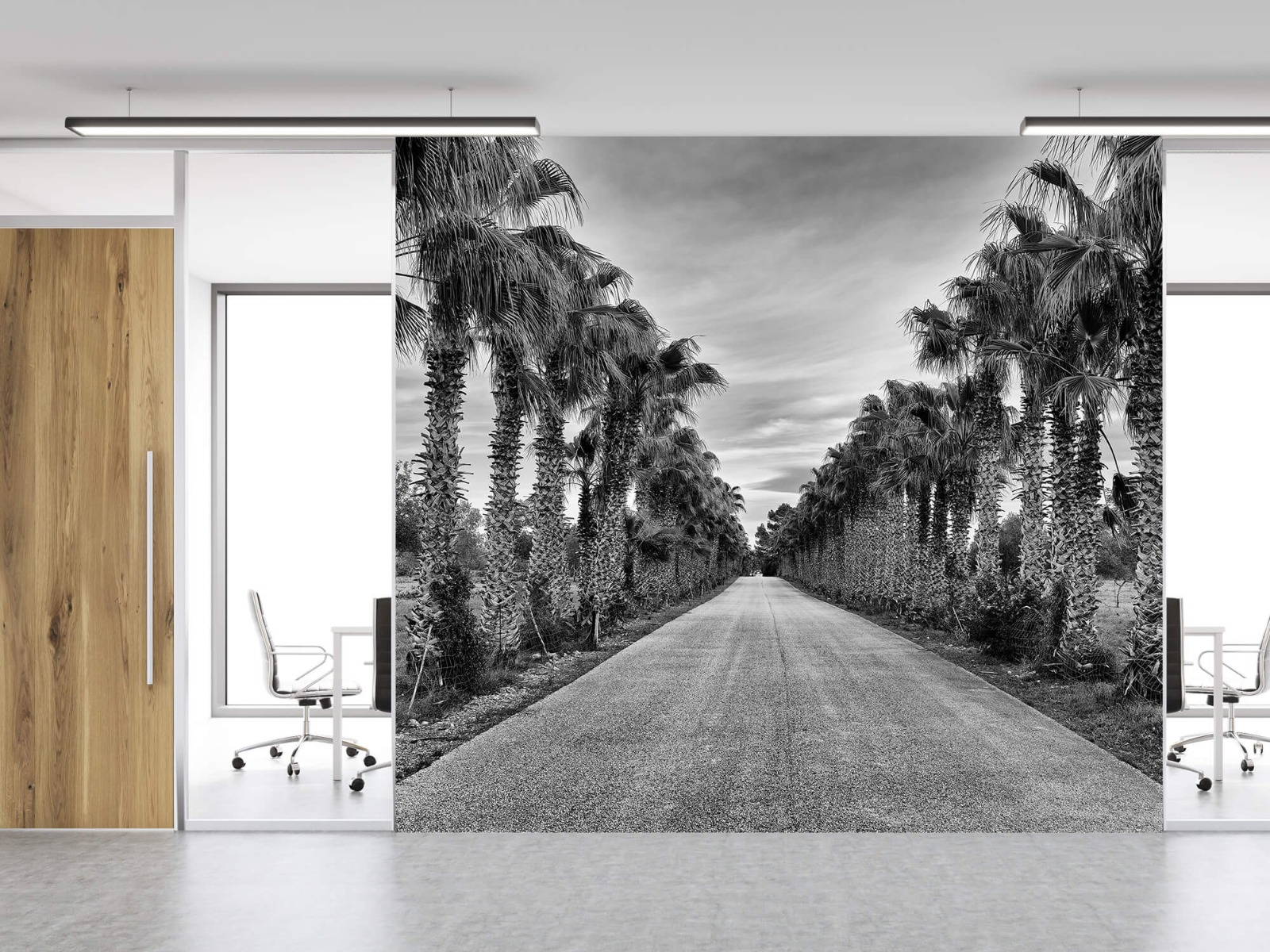 Palmbomen - Straat met palmbomen - Woonkamer 11