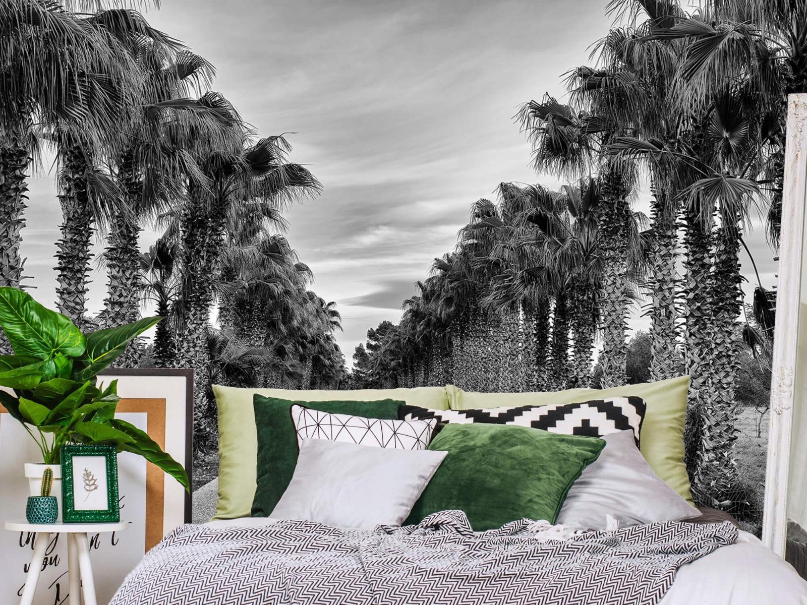 Palmbomen - Straat met palmbomen - Woonkamer 12
