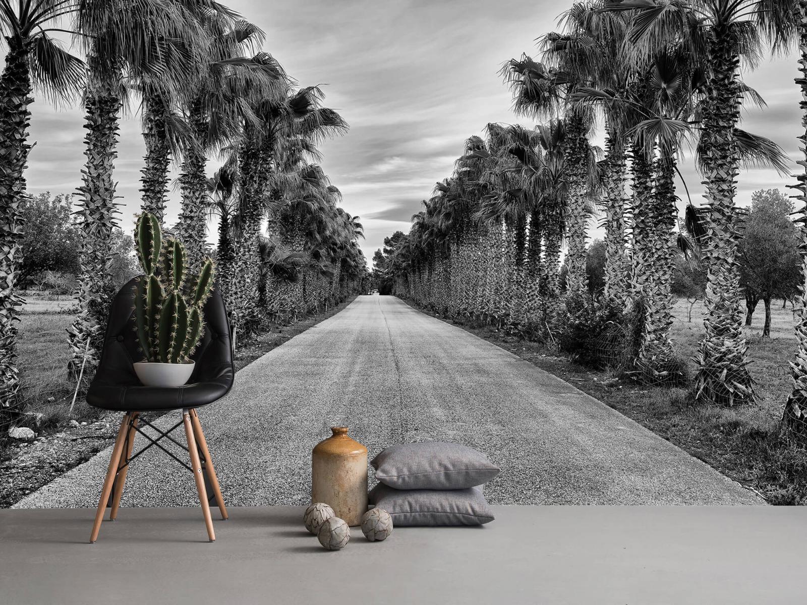 Palmbomen - Straat met palmbomen - Woonkamer 13