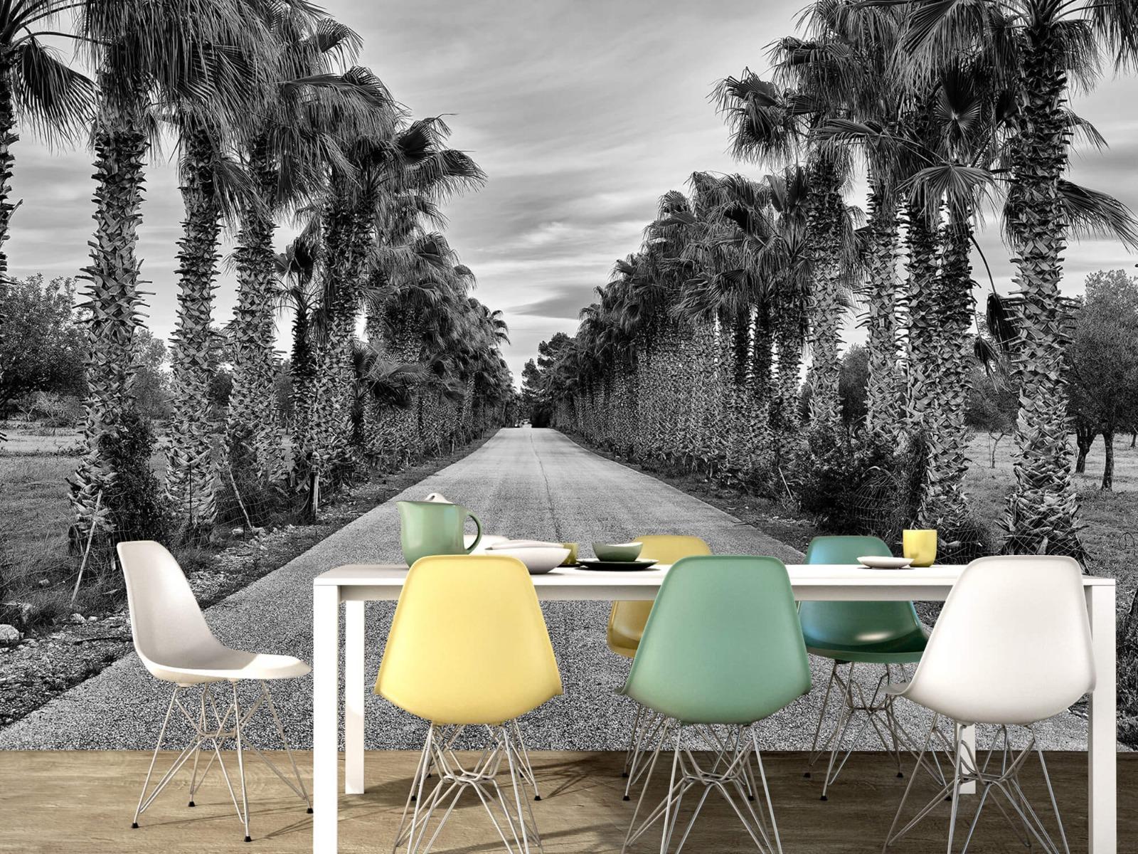 Palmbomen - Straat met palmbomen - Woonkamer 15