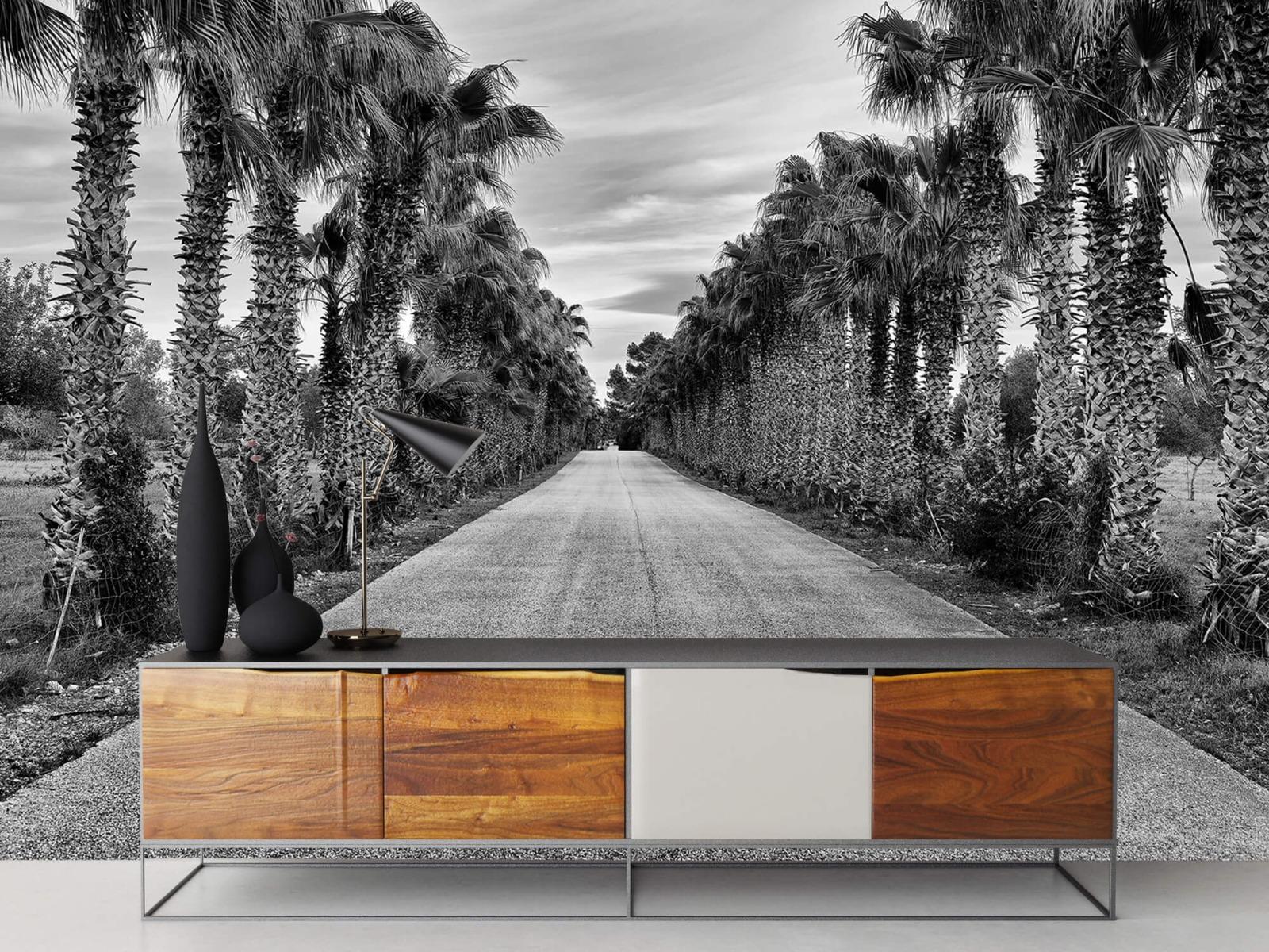 Palmbomen - Straat met palmbomen - Woonkamer 16