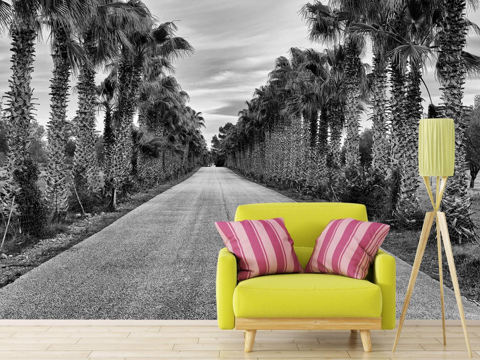 Palmbomen - Straat met palmbomen - Woonkamer 17