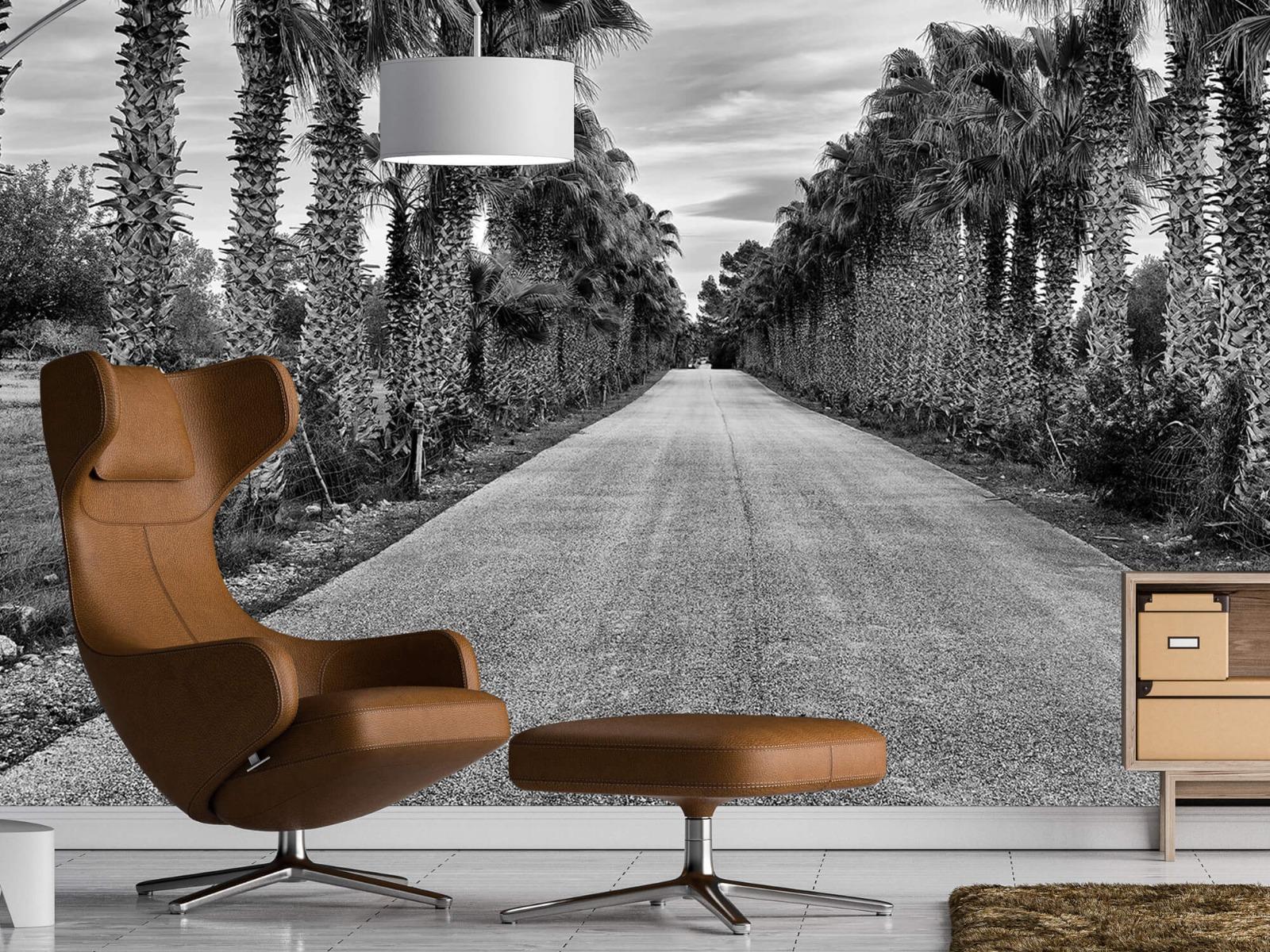 Palmbomen - Straat met palmbomen - Woonkamer 19