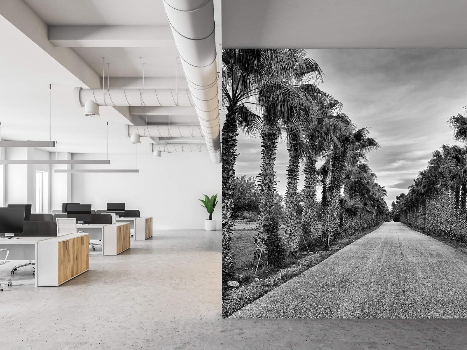 Palmbomen - Straat met palmbomen - Woonkamer 21
