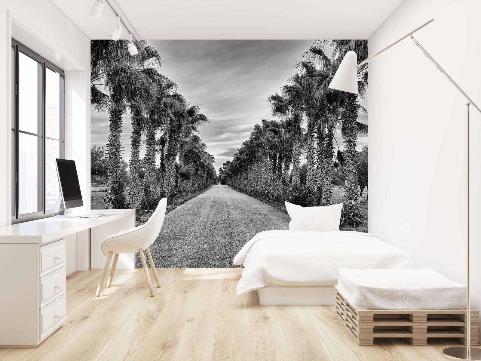 Palmbomen - Straat met palmbomen - Woonkamer 22