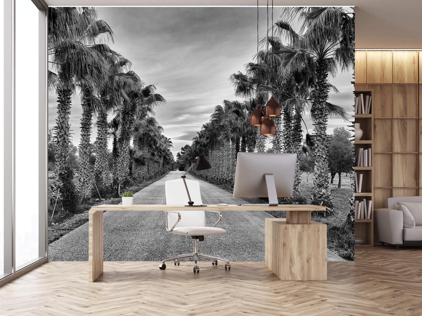 Palmbomen - Straat met palmbomen - Woonkamer 24
