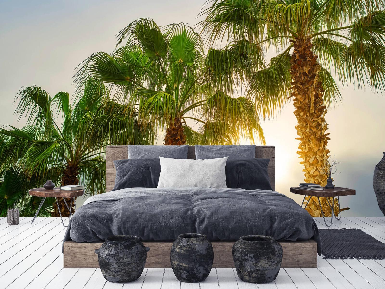 Palmbomen - Palmbomen met zon - Gang 6