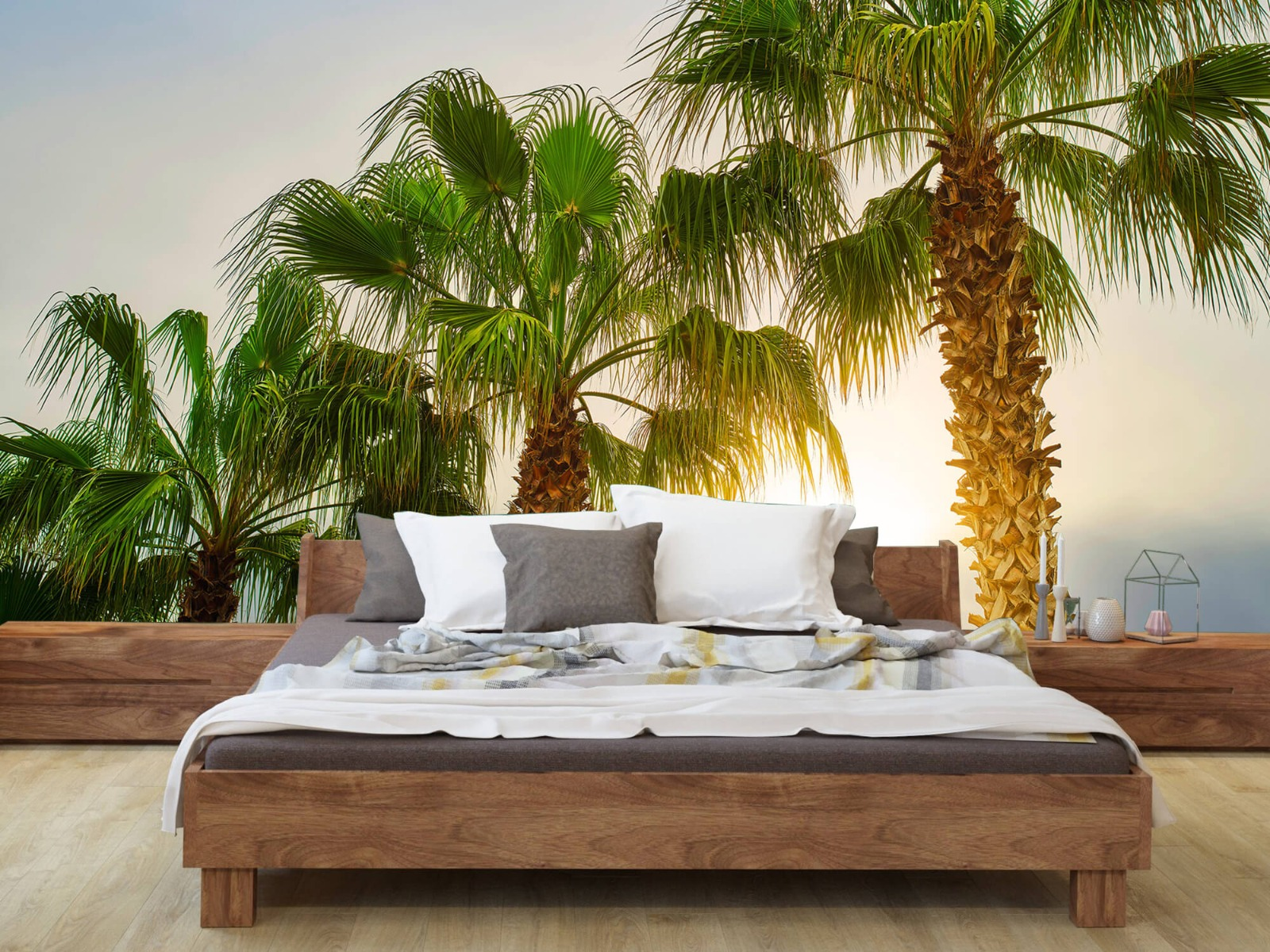 Palmbomen - Palmbomen met zon - Gang 8