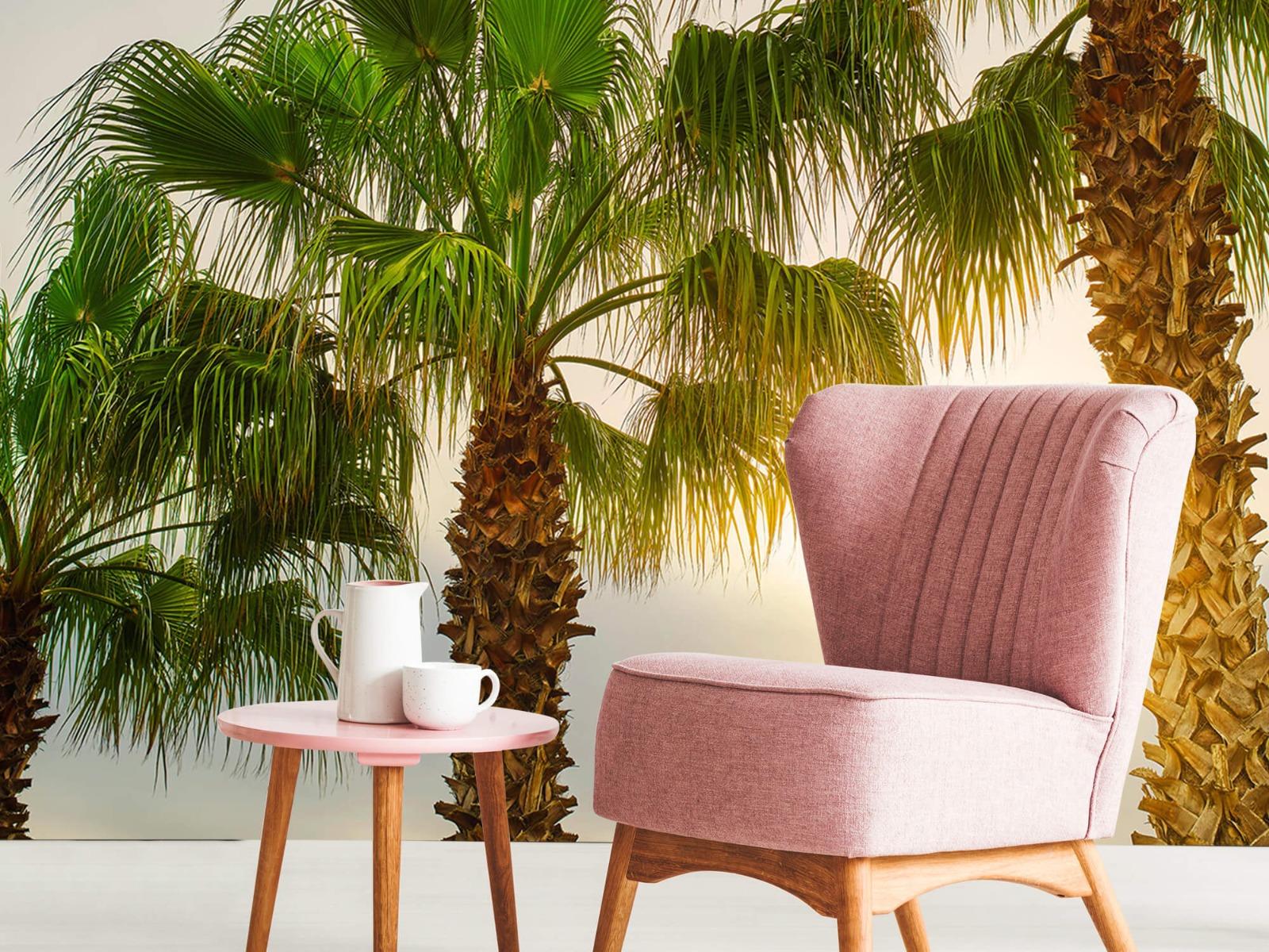 Palmbomen - Palmbomen met zon - Gang 9