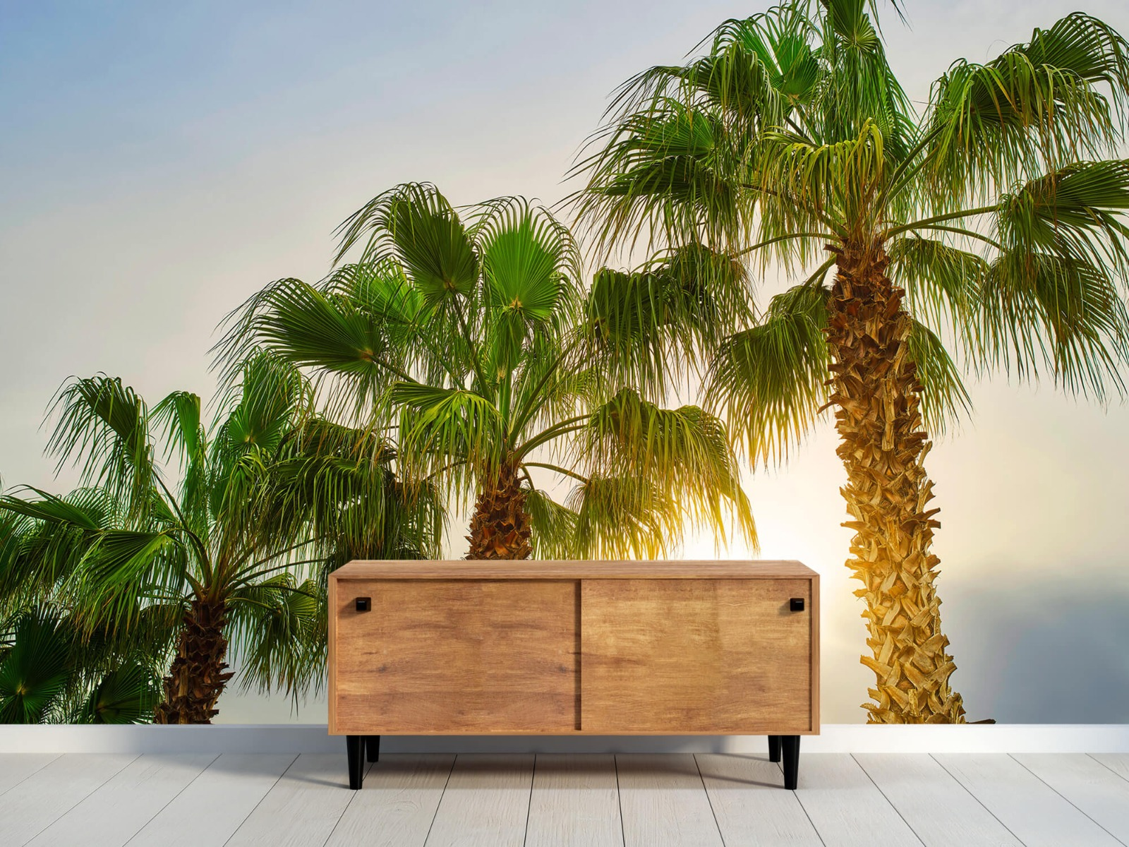 Palmbomen - Palmbomen met zon - Gang 10