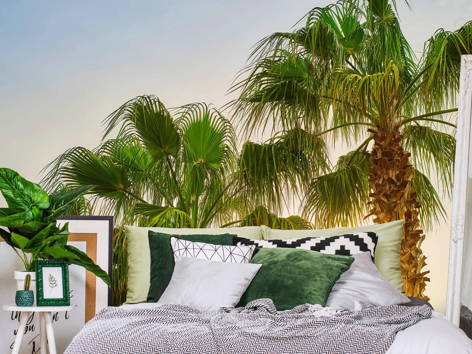 Palmbomen - Palmbomen met zon - Gang 13