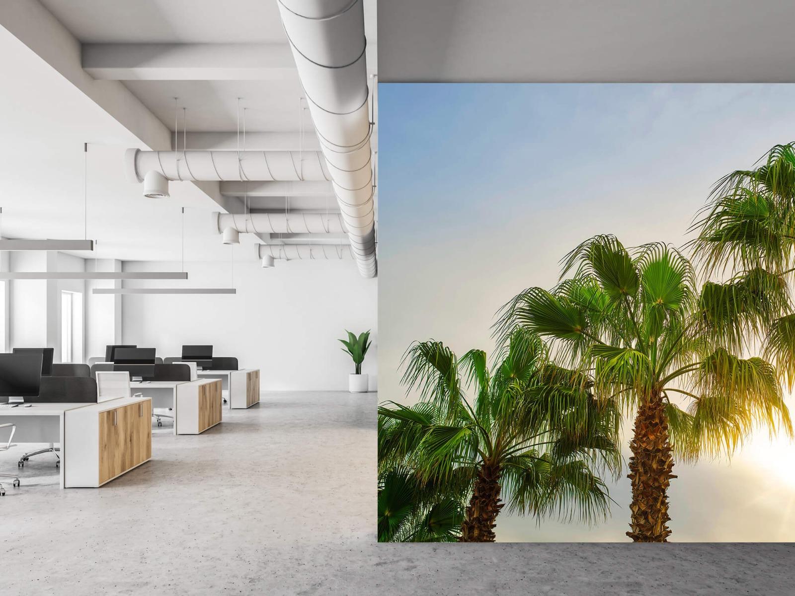 Palmbomen - Palmbomen met zon - Gang 21