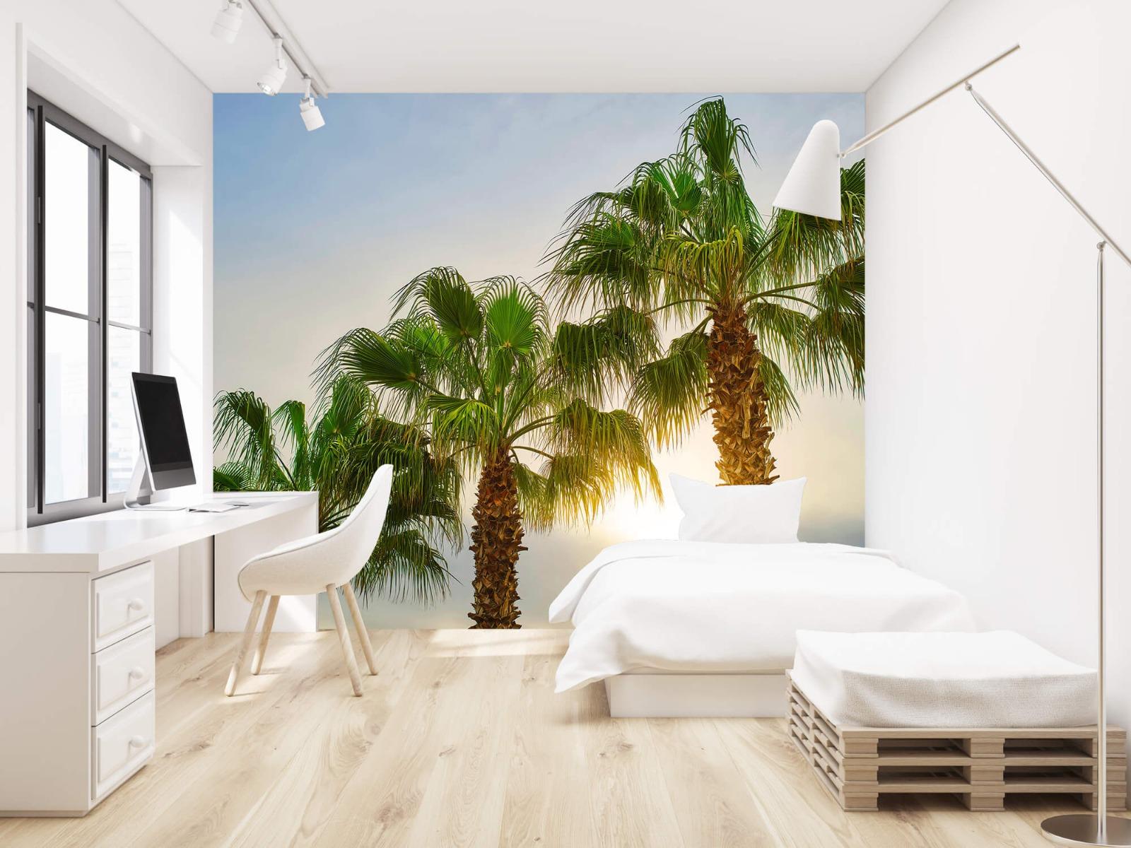 Palmbomen - Palmbomen met zon - Gang 22