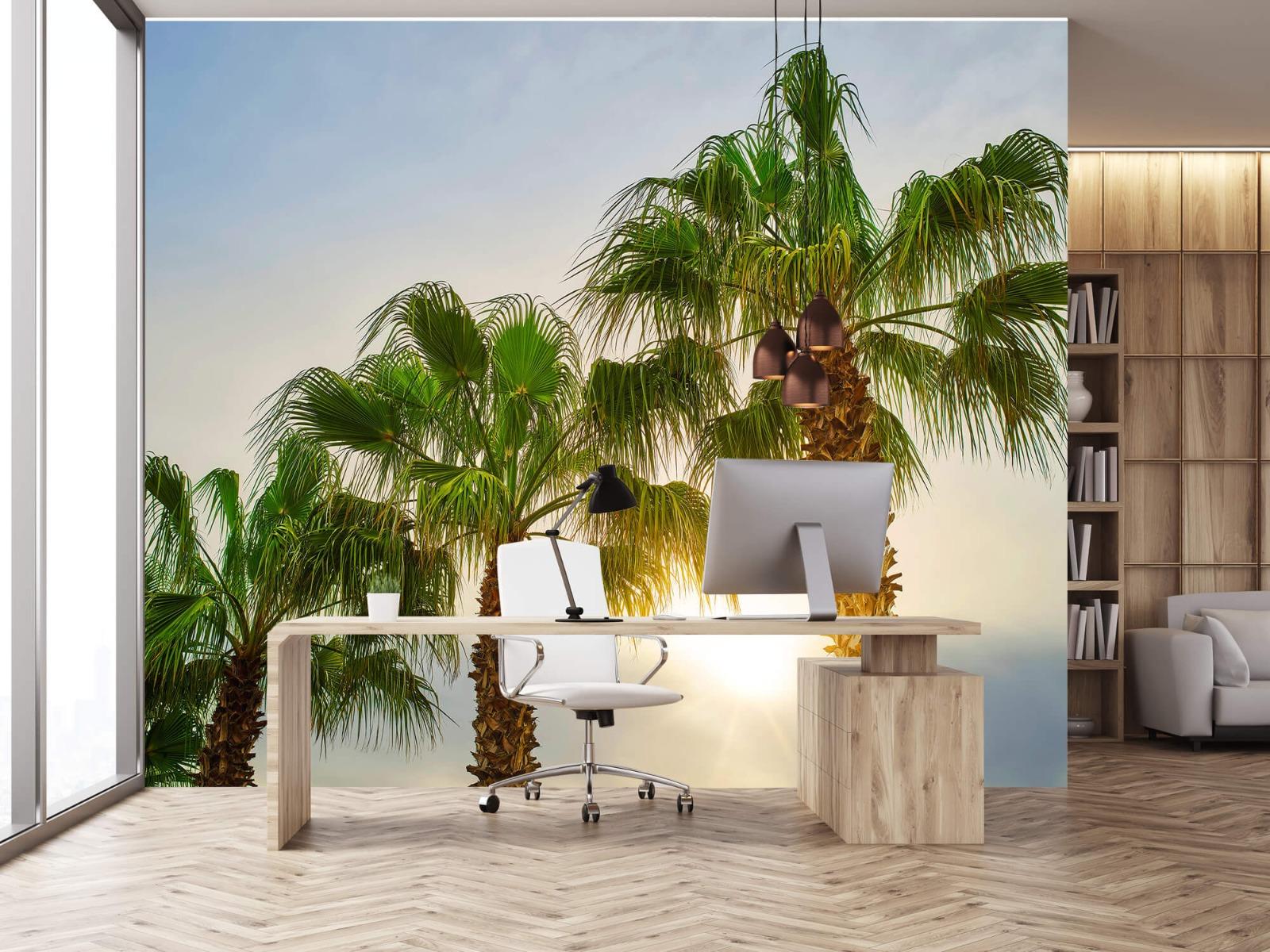 Palmbomen - Palmbomen met zon - Gang 24