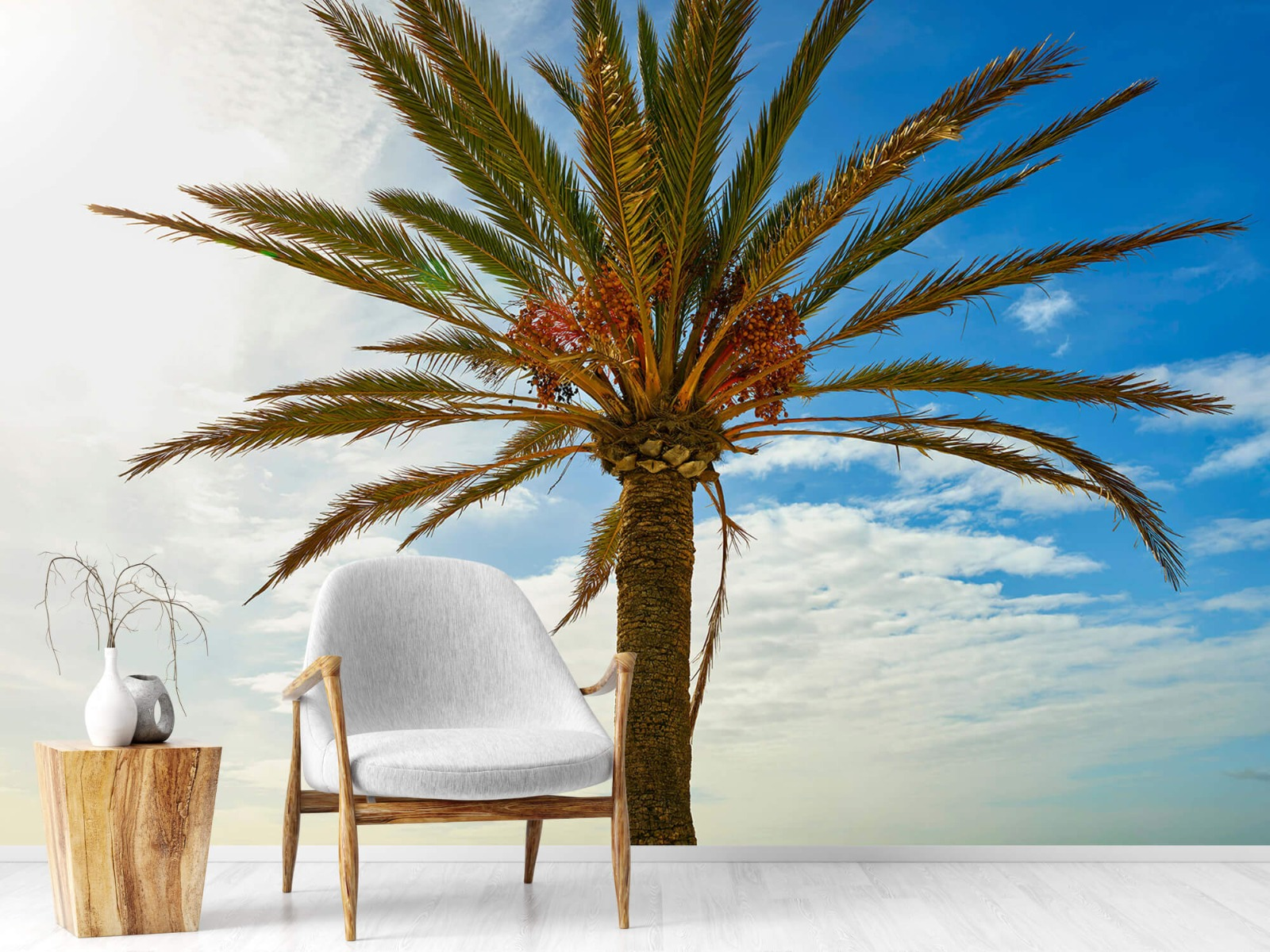 Palmbomen - Mooie palmboom - Keuken 18