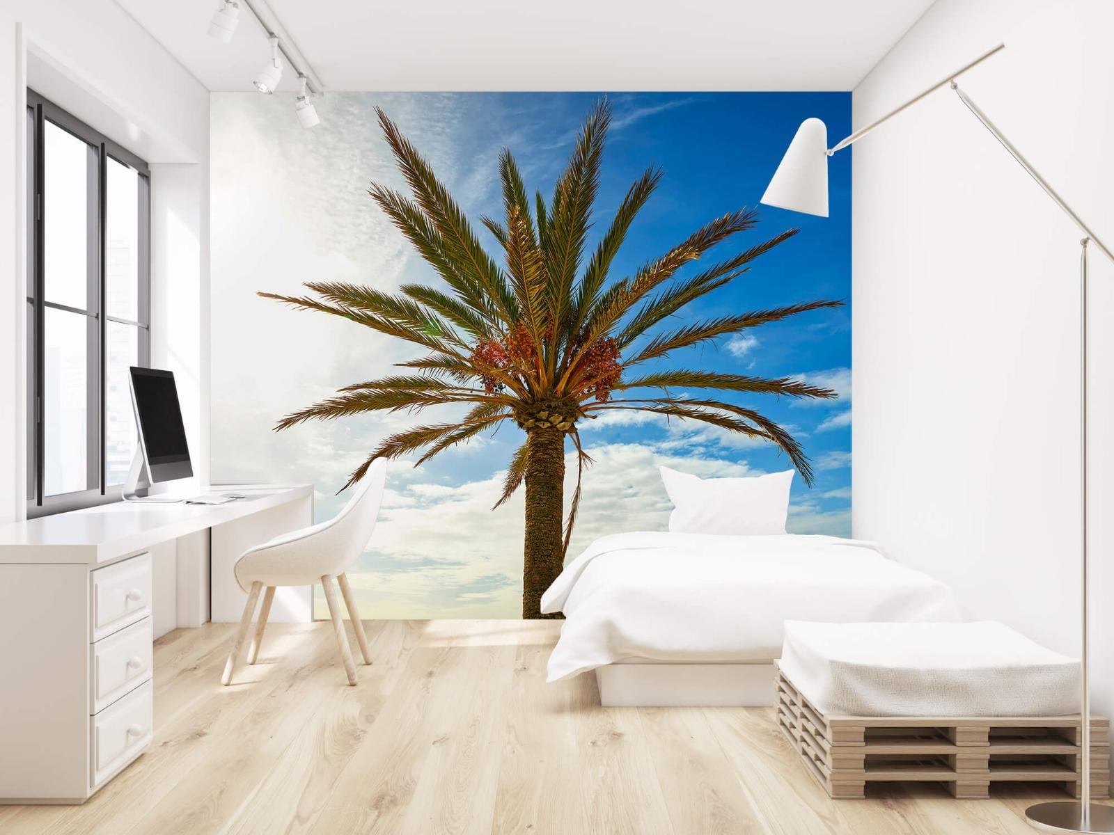 Palmbomen - Mooie palmboom - Keuken 22