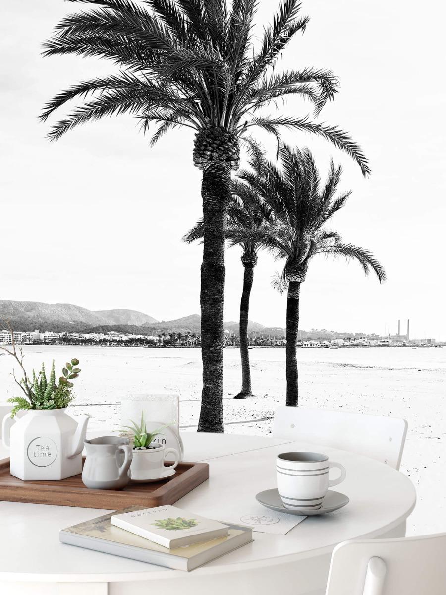 Palmbomen - Palmbomen bij elkaar - Ontvangstruimte 8