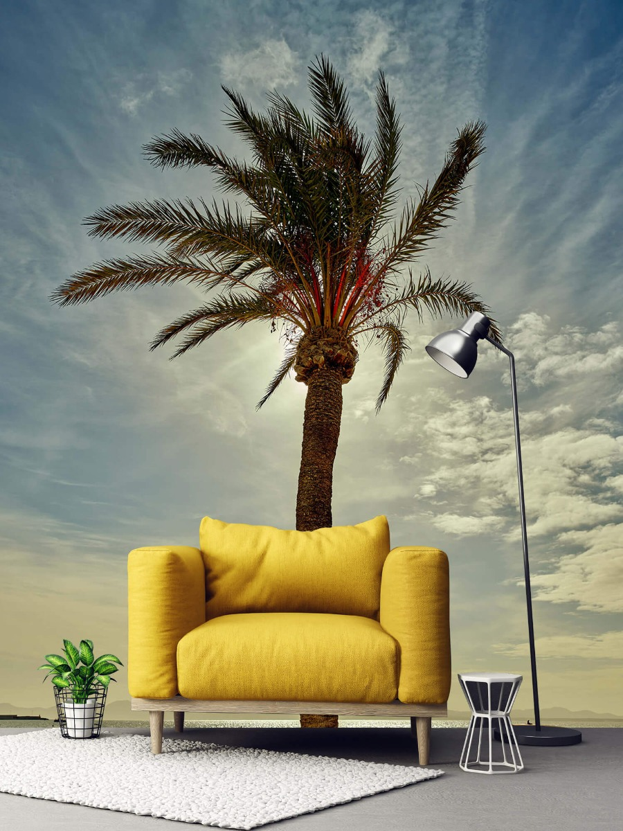 Palmbomen - Palmboom in de zon - Slaapkamer 3