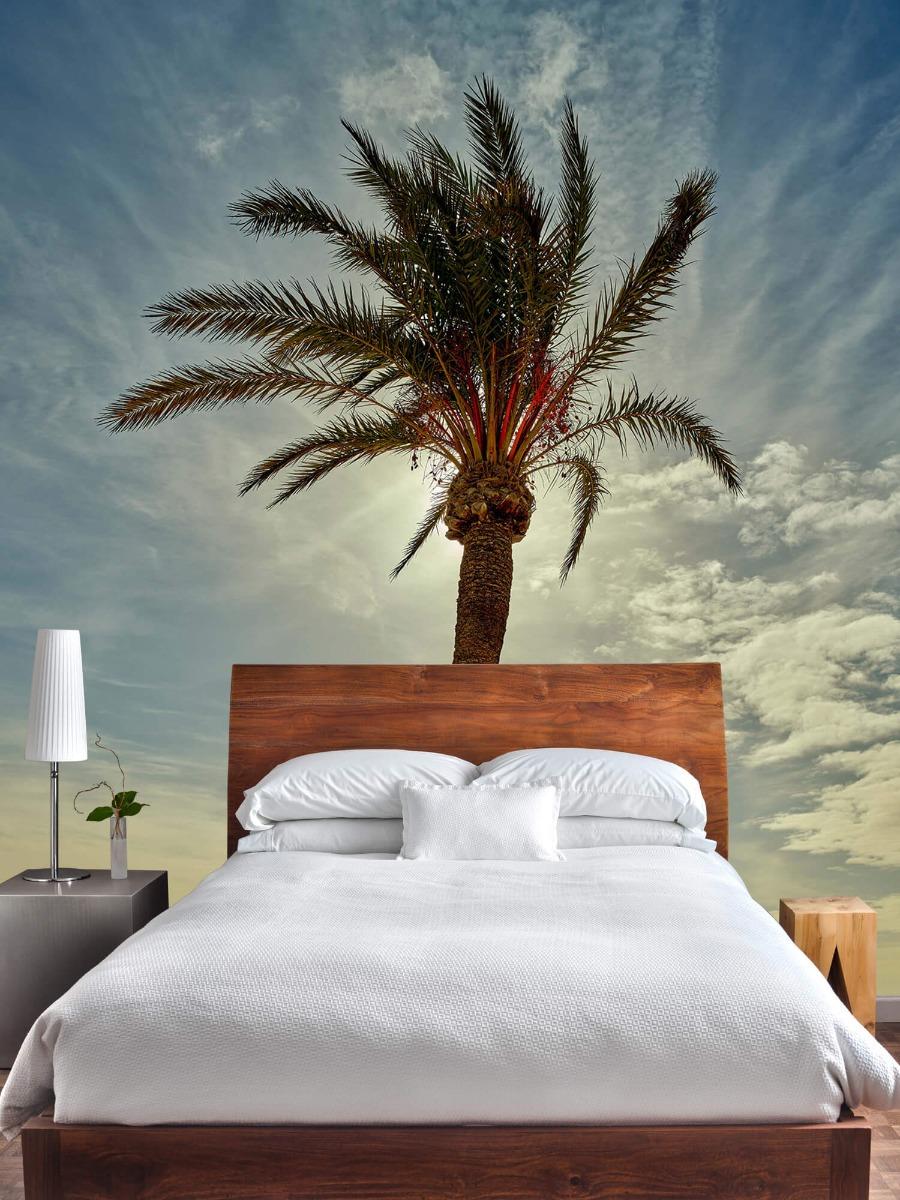 Palmbomen - Palmboom in de zon - Slaapkamer 4