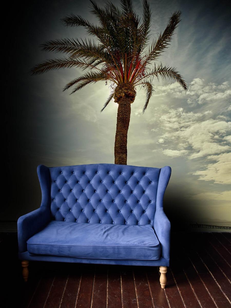 Palmbomen - Palmboom in de zon - Slaapkamer 5