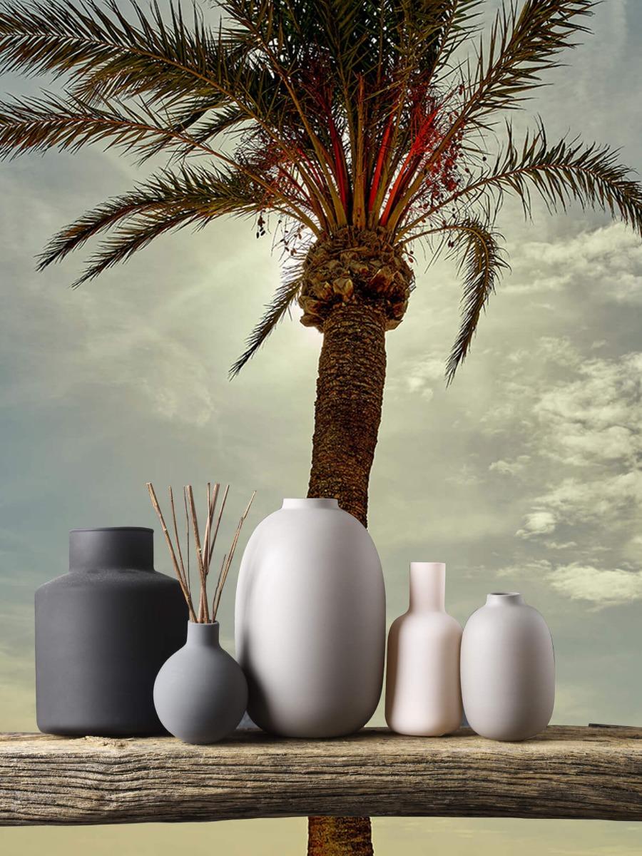 Palmbomen - Palmboom in de zon - Slaapkamer 1