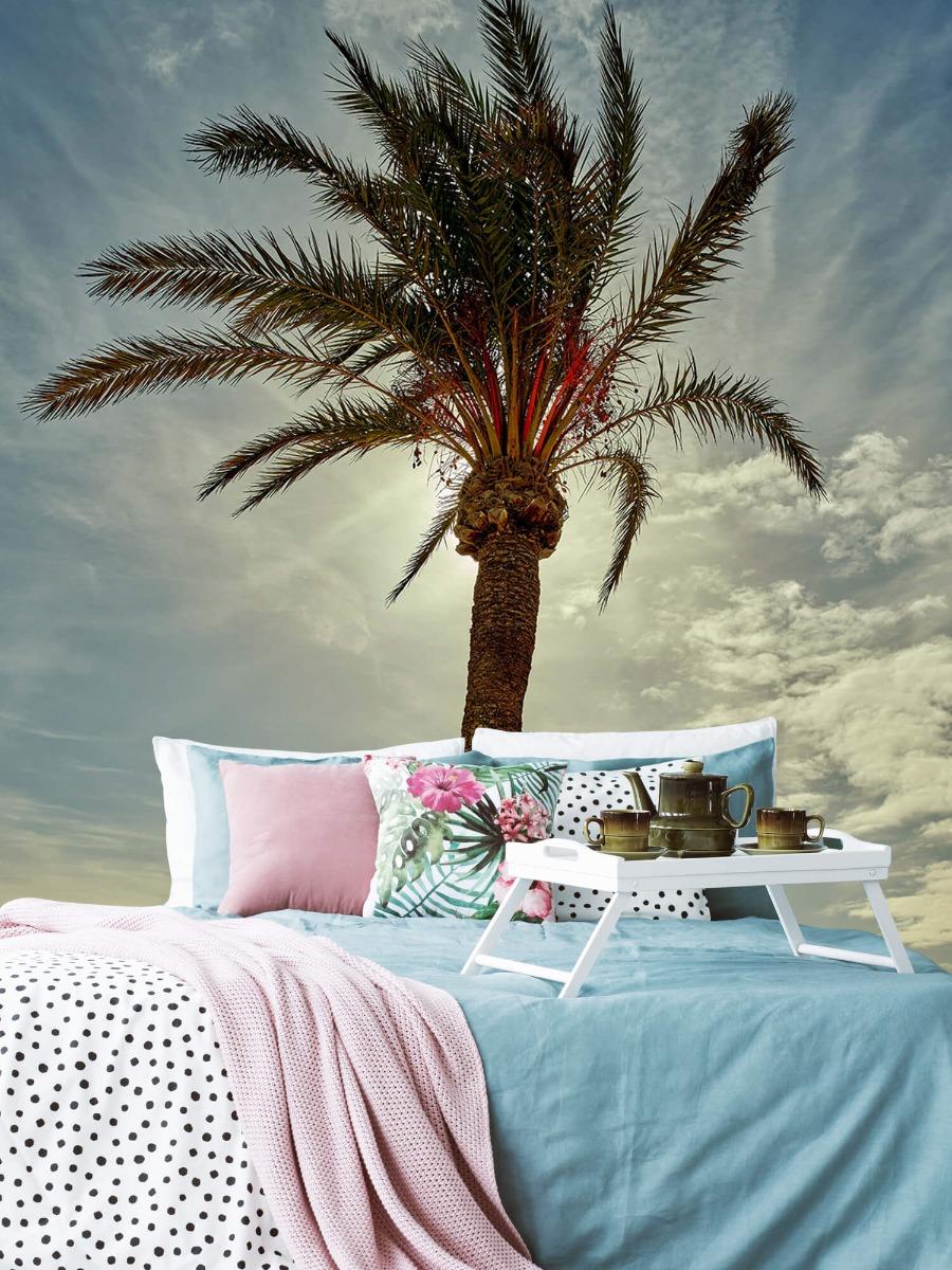 Palmbomen - Palmboom in de zon - Slaapkamer 6